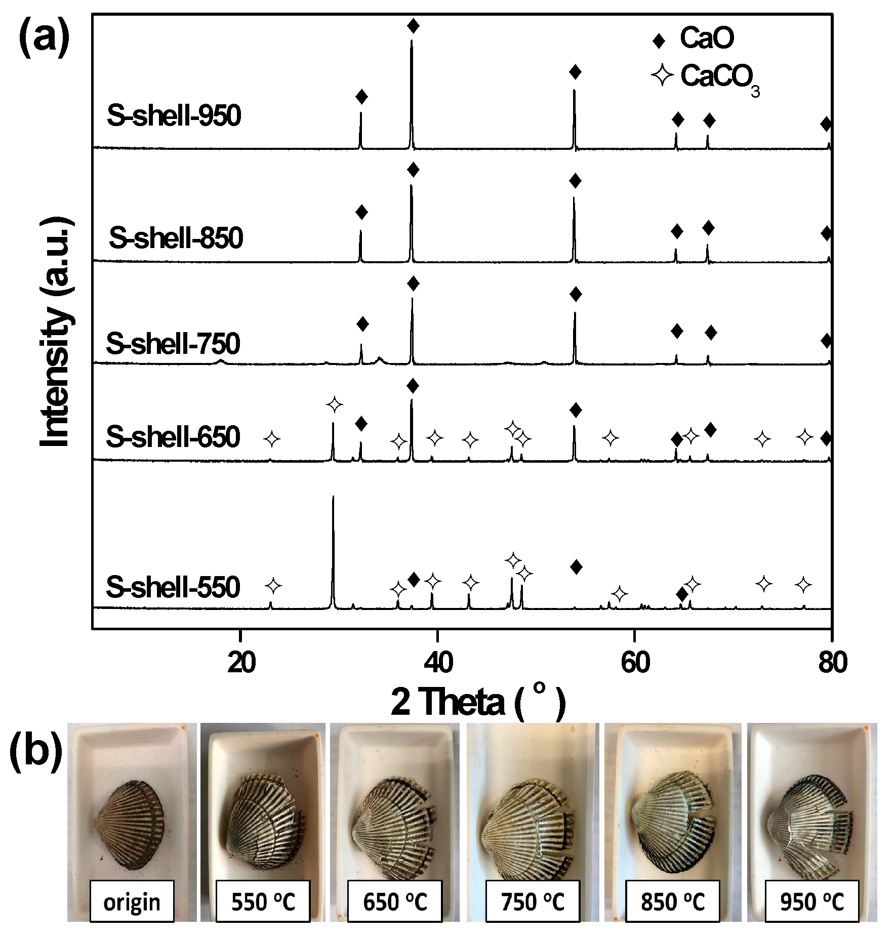 Catalysts   Free Full-Text   Waste Seashells as a Highly Active