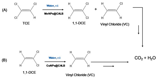 catalysts 10 00753 g001 550