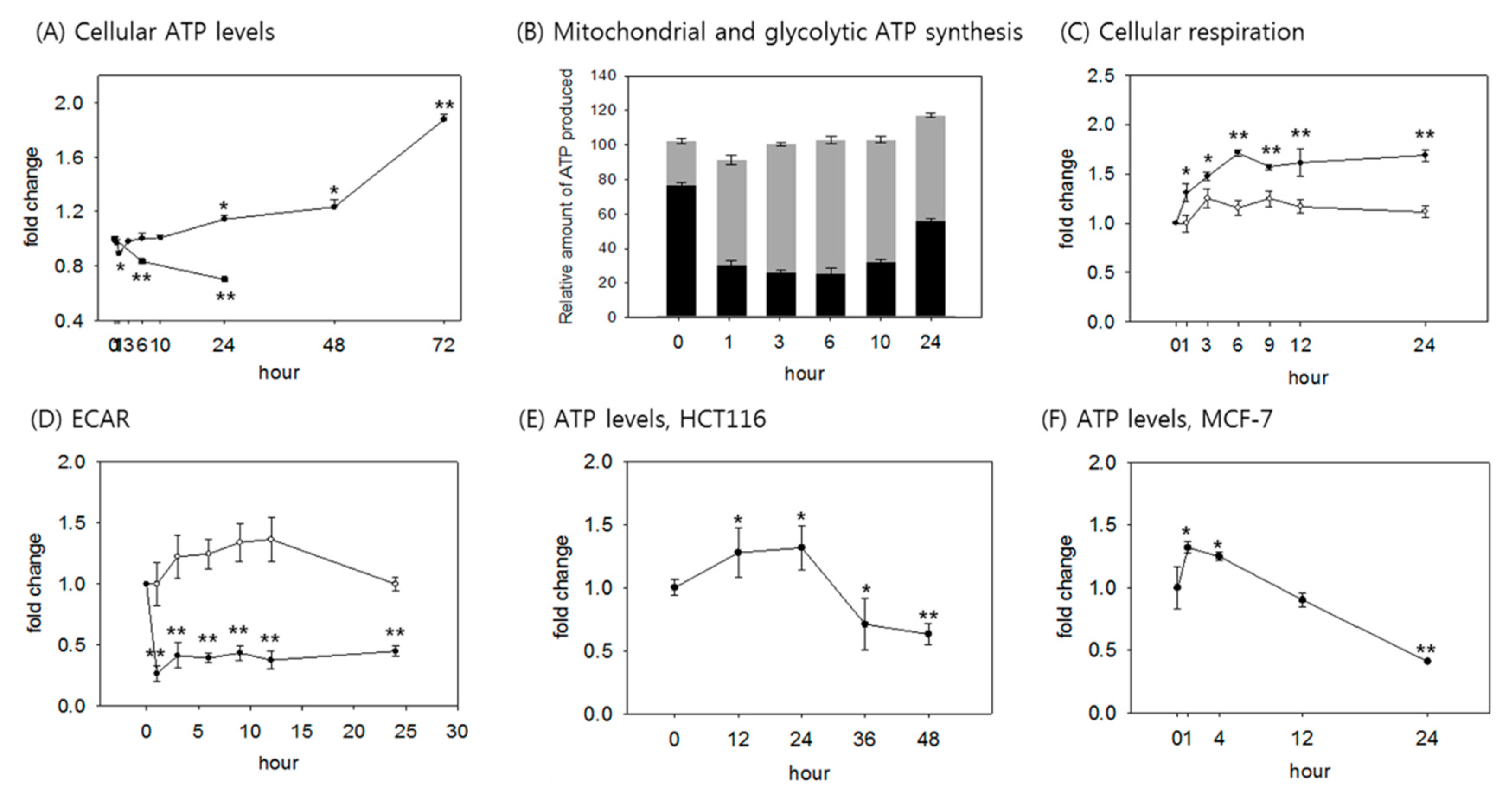 Cells Free Full Text A Rise In Atp Ros And Mitochondrial