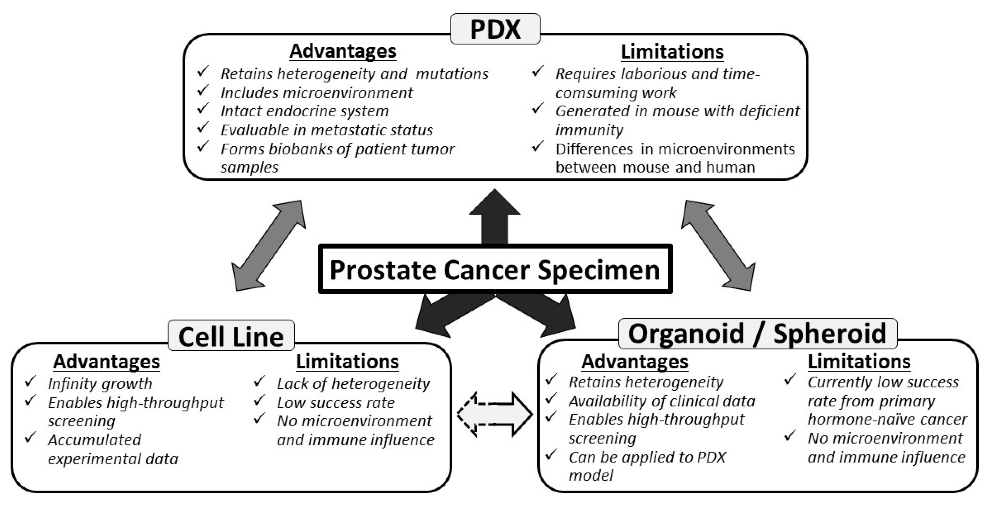 Mumiya és prostatitis Prostatitis lézer húgycső
