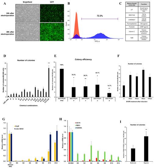 Cells   An Open Access Journal from MDPI