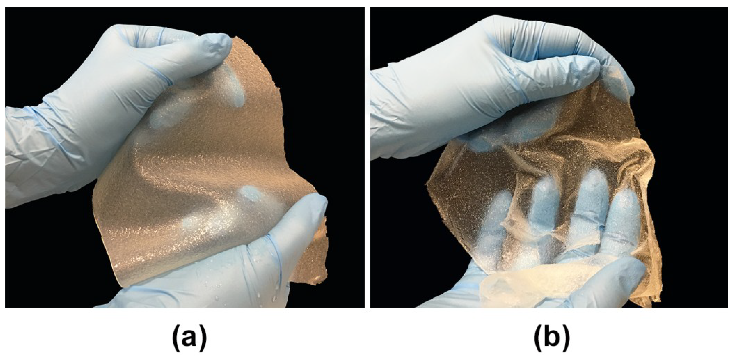 Cells Free Full Text Cellular Response To Vitamin C Enriched Chitosan Agarose Film With Potential Application As Artificial Skin Substitute For Chronic Wound Treatment Html
