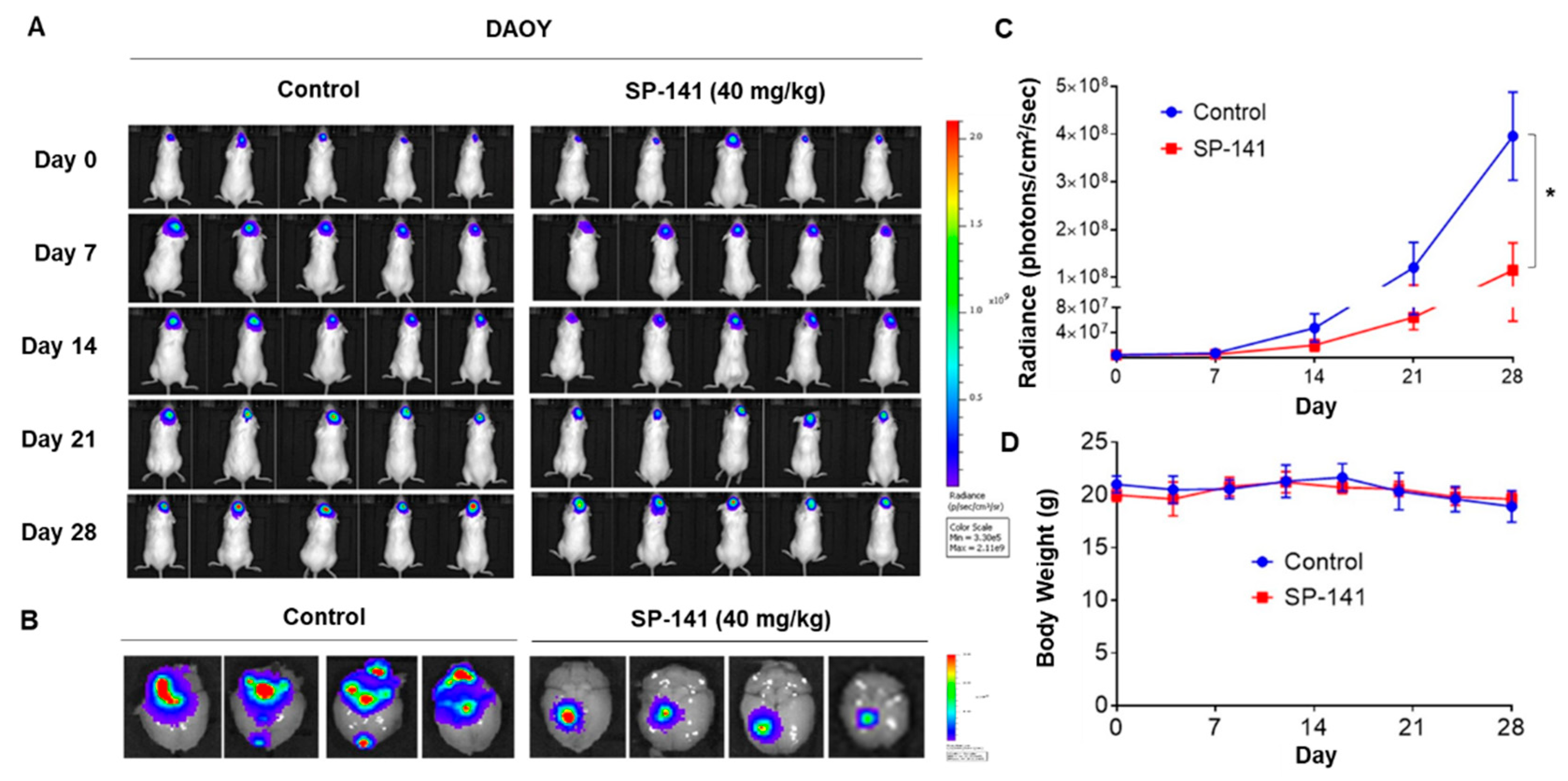 Cells Free Full Text Targeted Brain Tumor Therapy By Inhibiting The Mdm2 Oncogene In Vitro And In Vivo Antitumor Activity And Mechanism Of Action Html