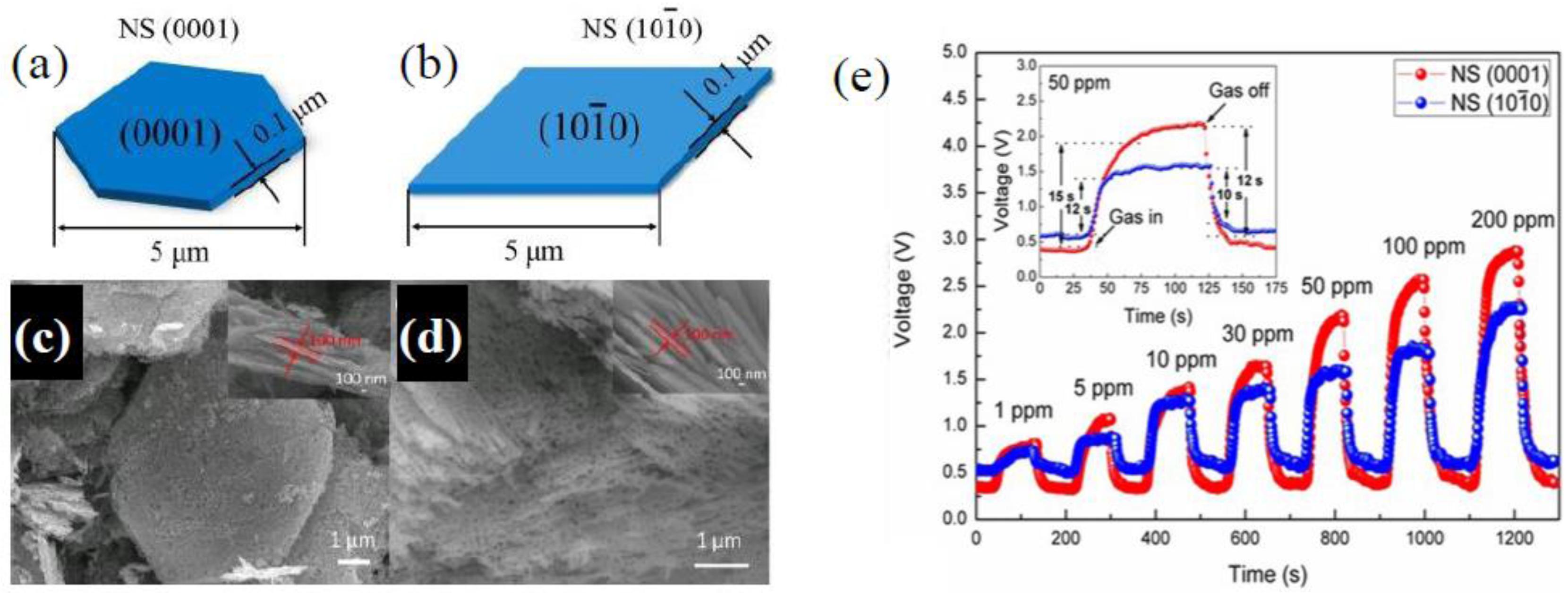 Gas sensors on zinc oxide nanostructures