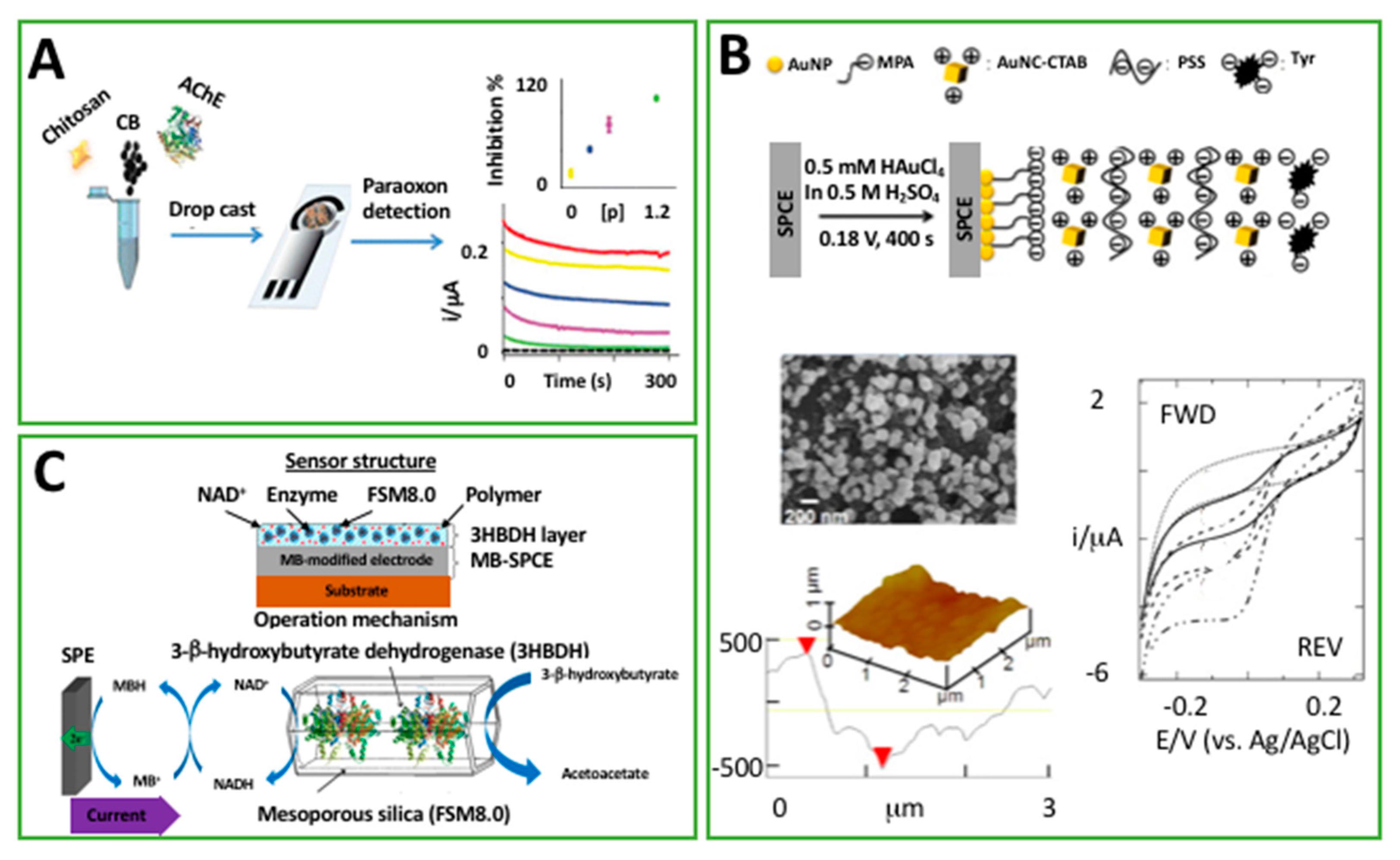 Chemosensors Free FullText Polymeric Materials For Printed - Biodot Net Developer Cover Letter