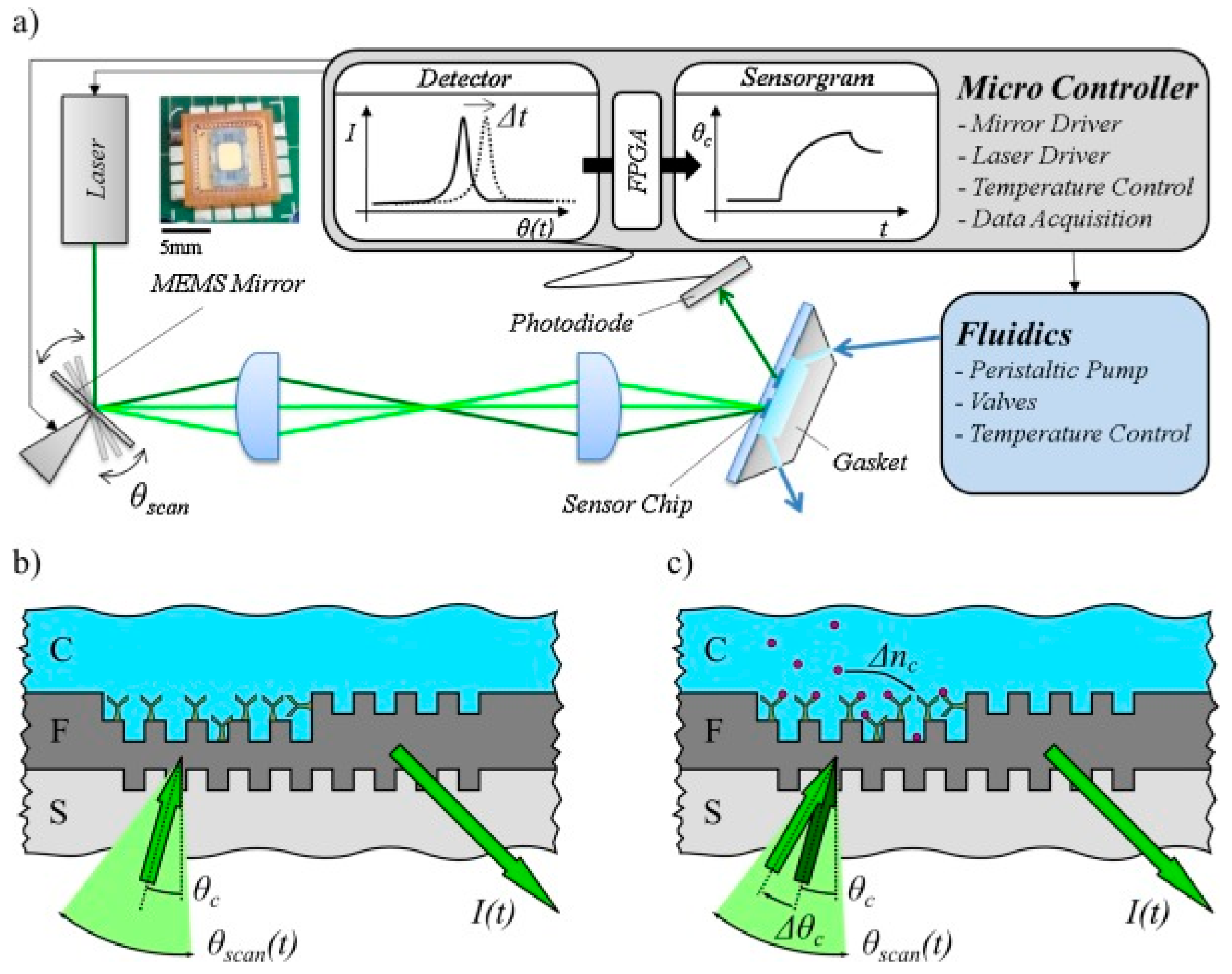 Chemosensors | Free Full-Text | Label-Free Biosensors Based