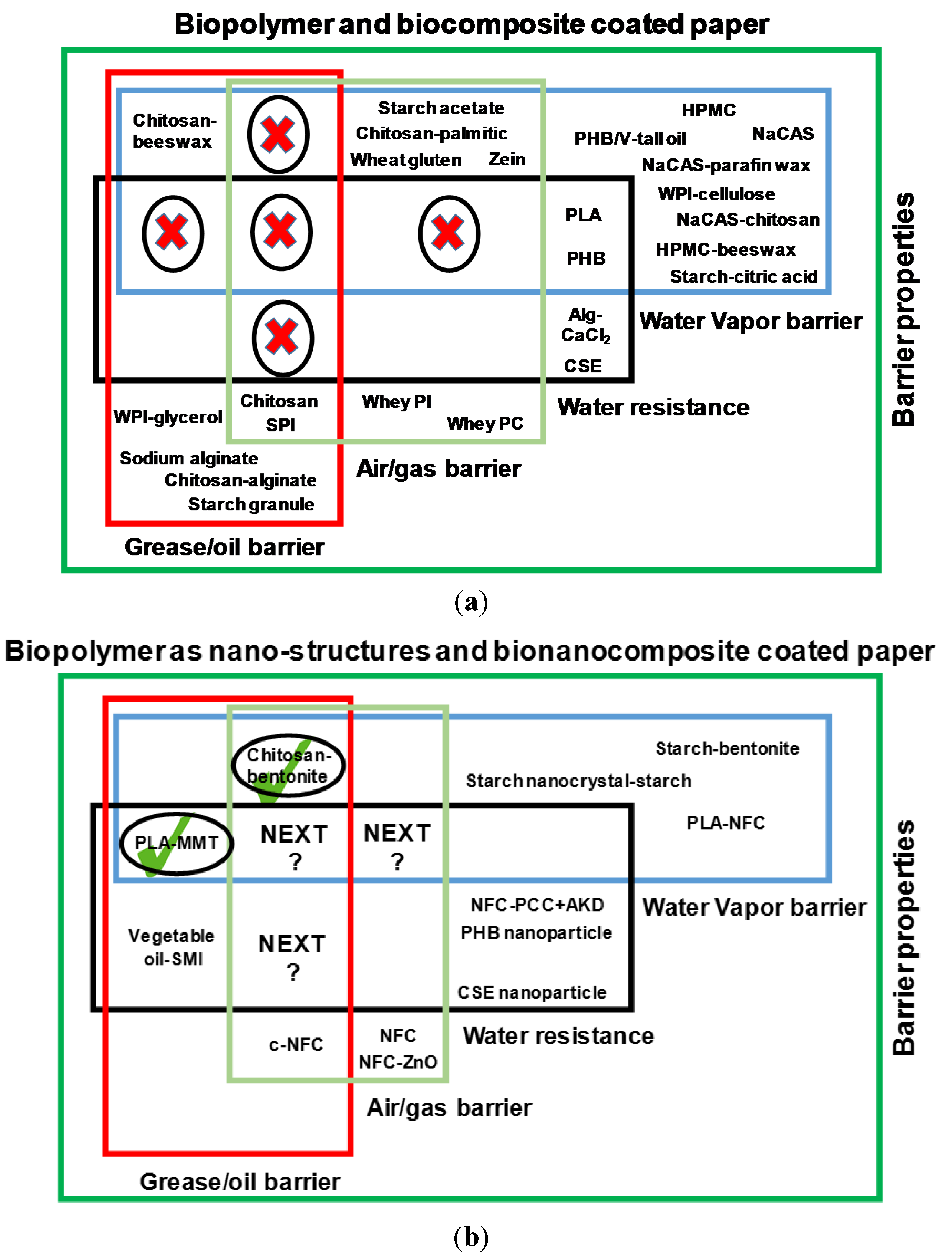 Biopolymers essay