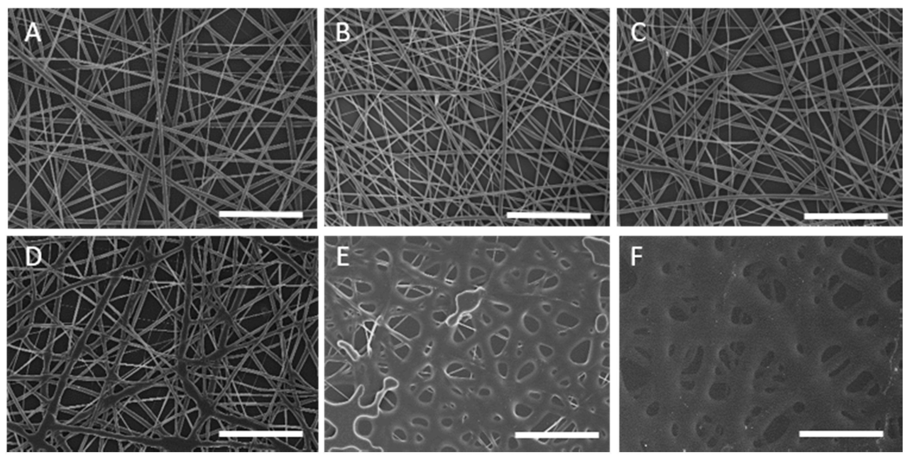 Coatings | Free Full-Text | Superhydrophobic Bio-Coating
