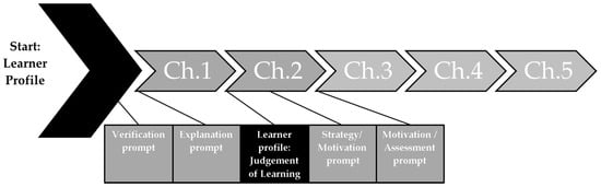 Assessing Efficiency of Prompts Based on Learner Characteristics