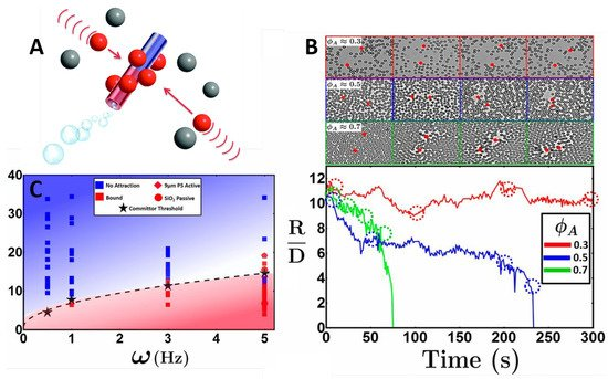 Condensed Matter | An Open Access Journal from MDPI