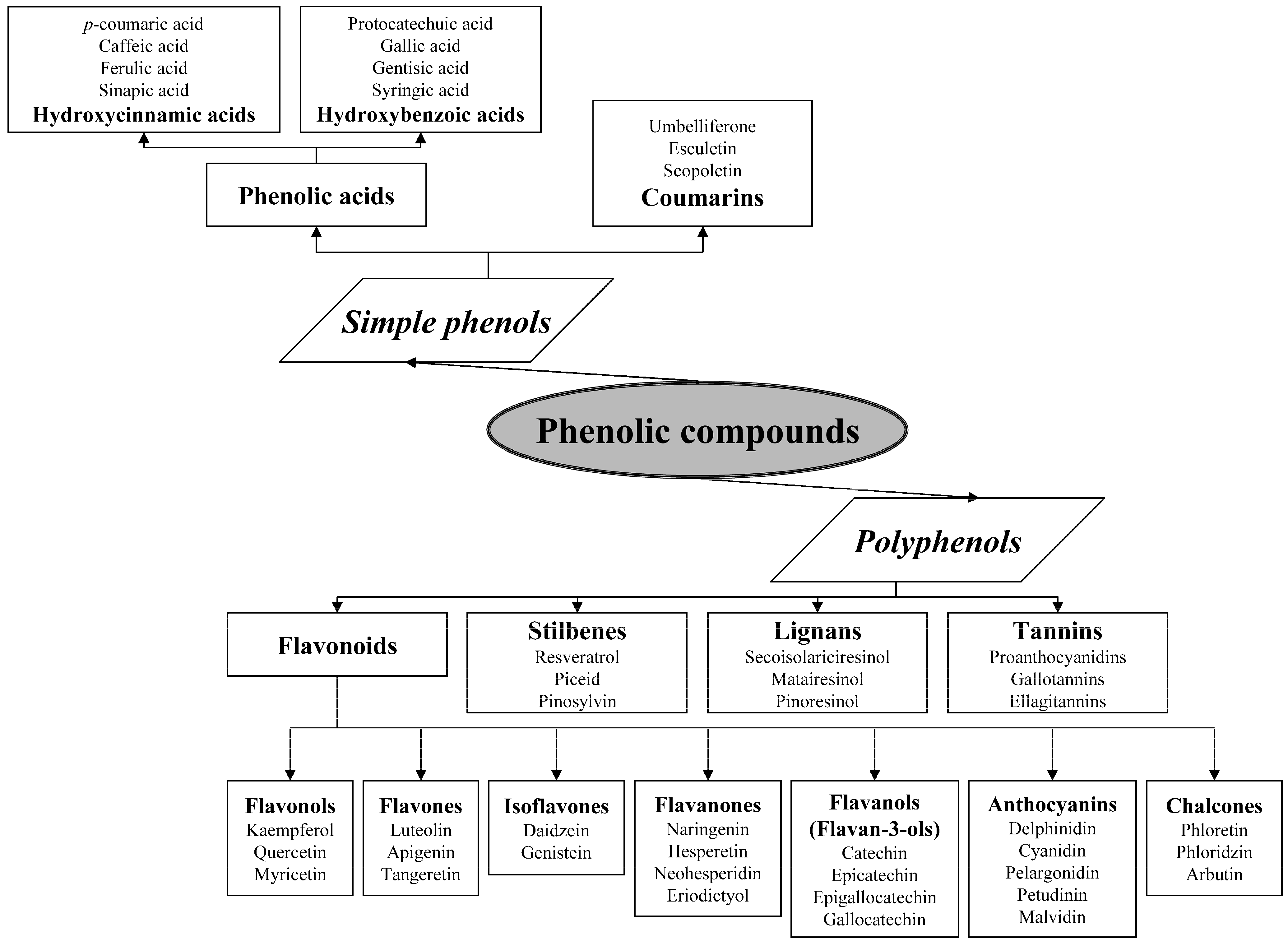 Energie Concept Lignan De Bordeaux cosmetics | free full-text | relevance of natural phenolics