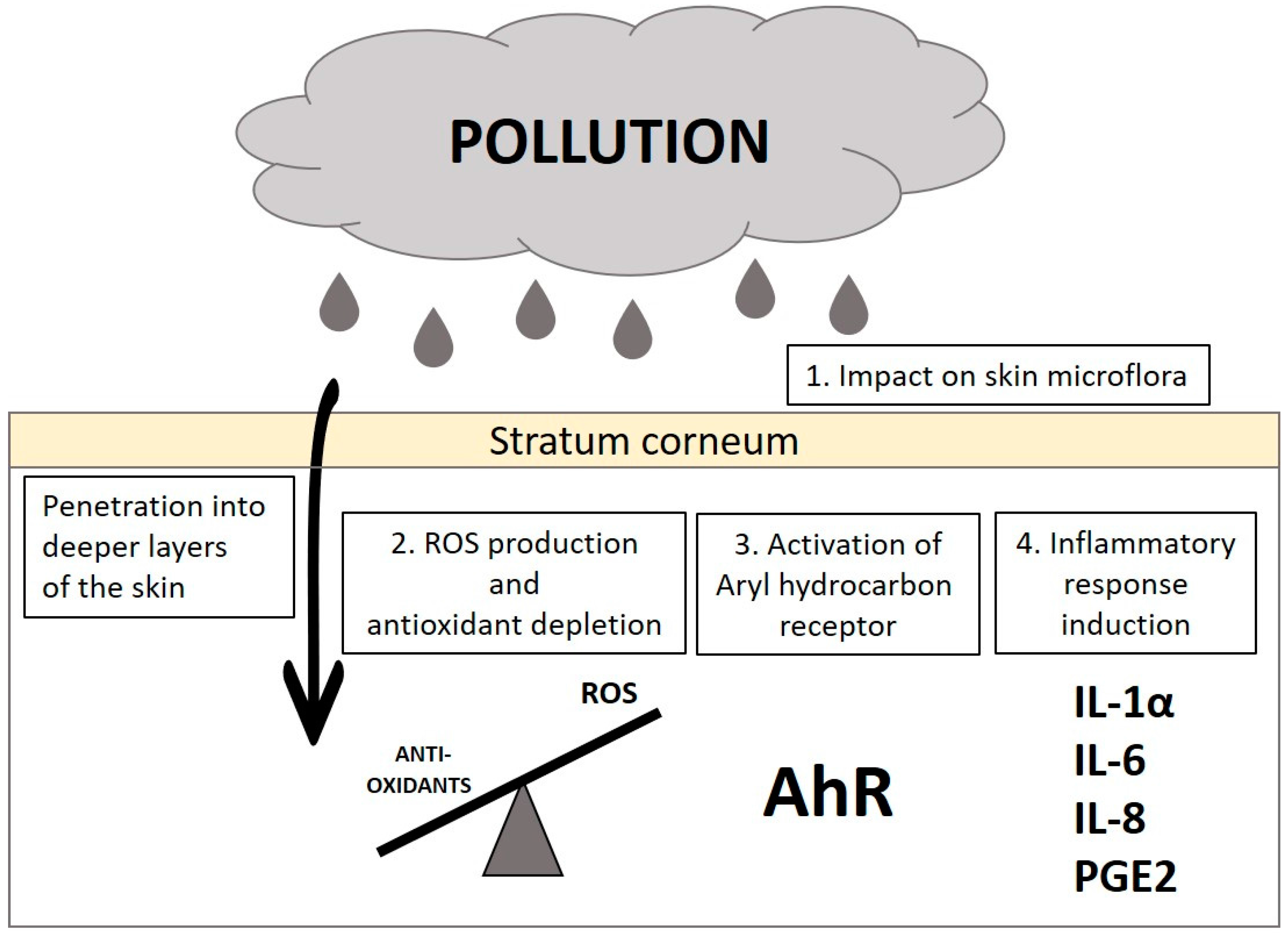 Cosmetics   Special Issue : Antipollution Cosmetics