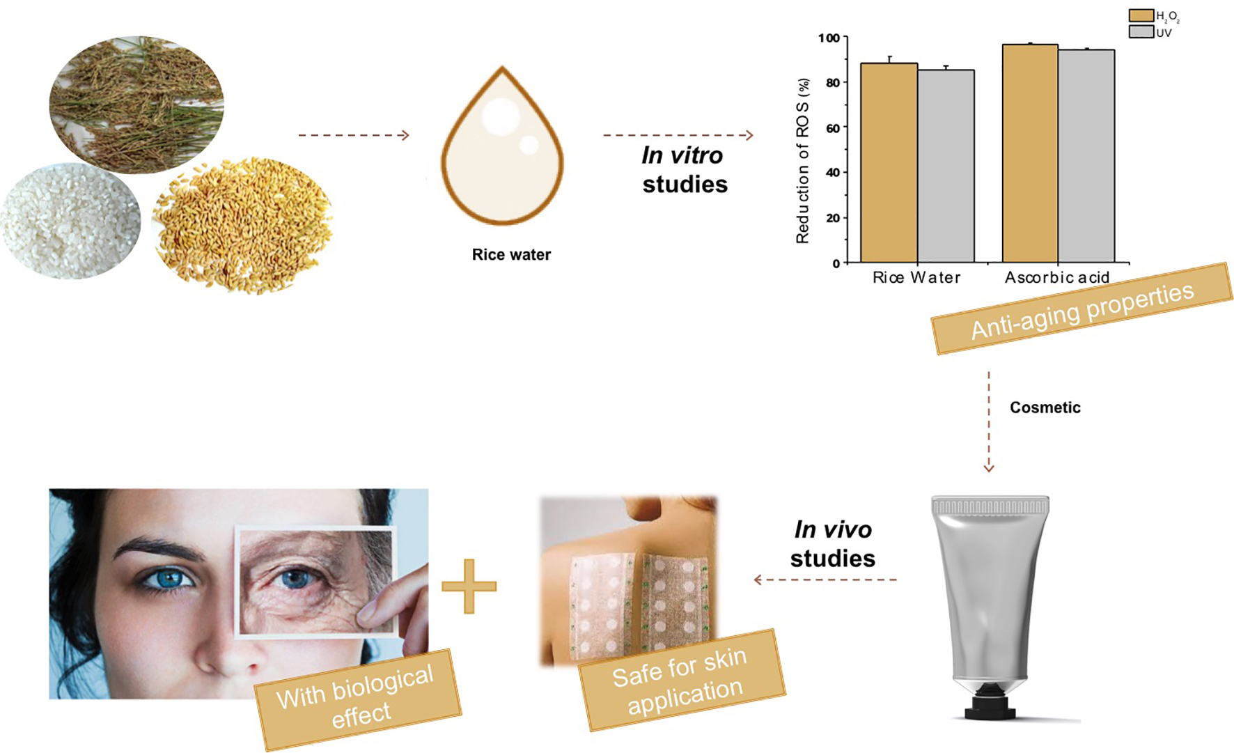 Cosmetics | Free Full-Text | Rice Water: A Traditional Ingredient