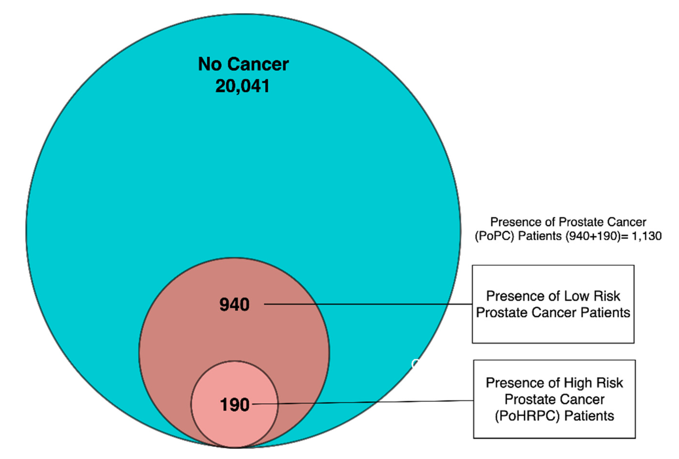 Data | Free Full-Text | Predicting High-Risk Prostate Cancer