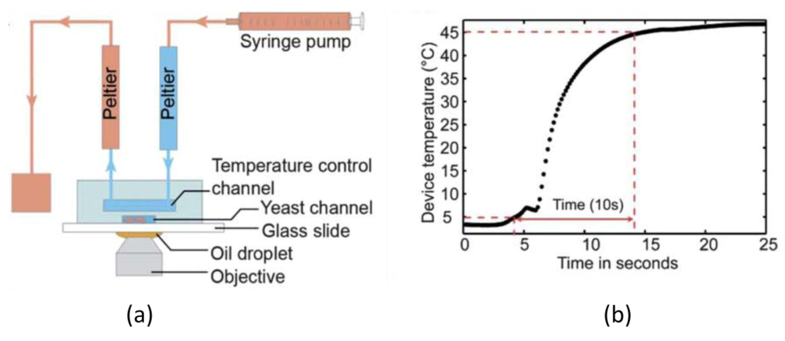 Temperature Control in Microfluidic Systems: Techniques and #2C749F