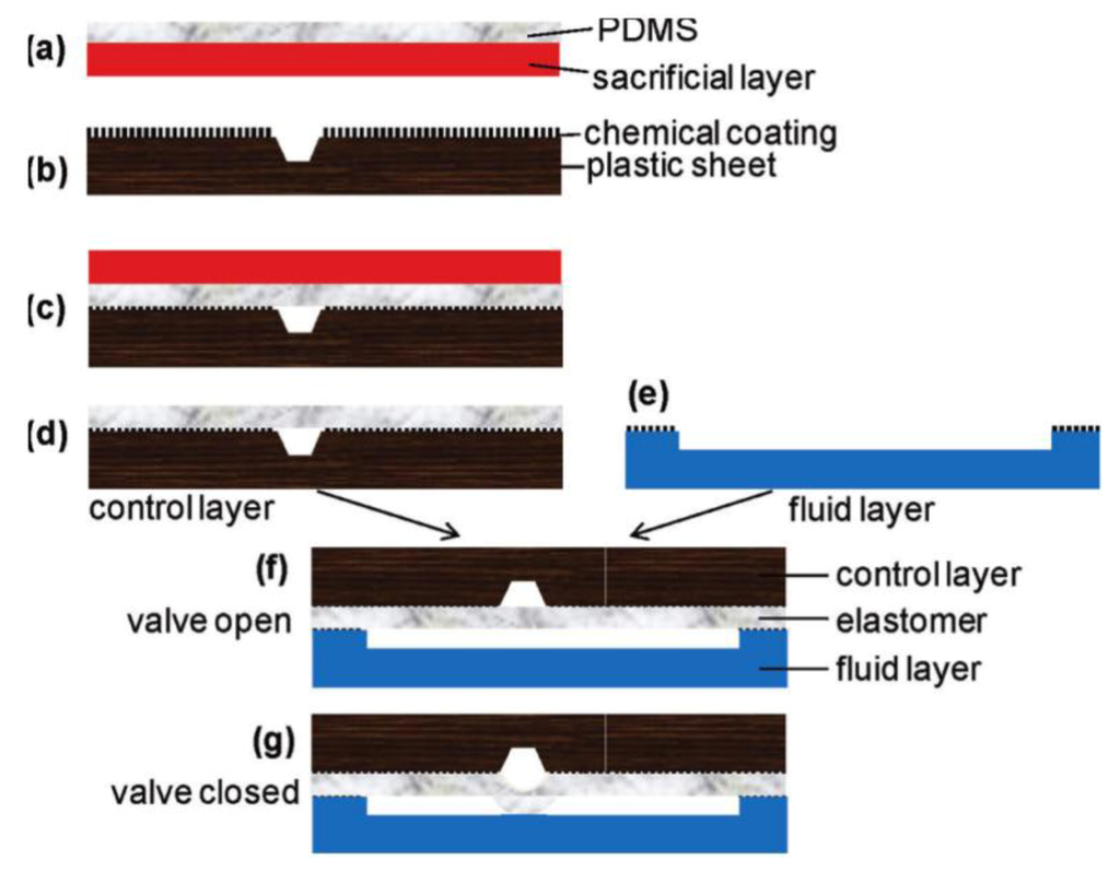 Heating and Temperature Control in Microfluidic Systems: Techniques #B5161B