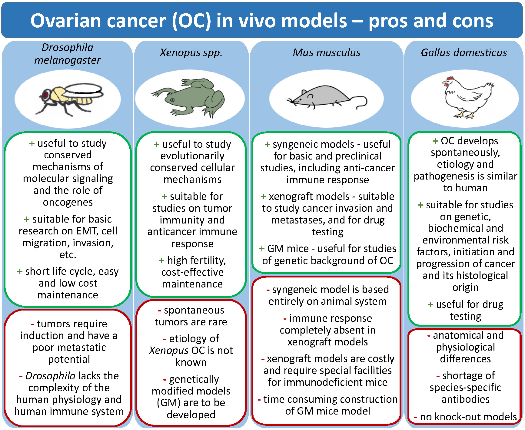 Diagnostics Free Full Text Characteristics Of In Vivo Model Systems For Ovarian Cancer Studies Html