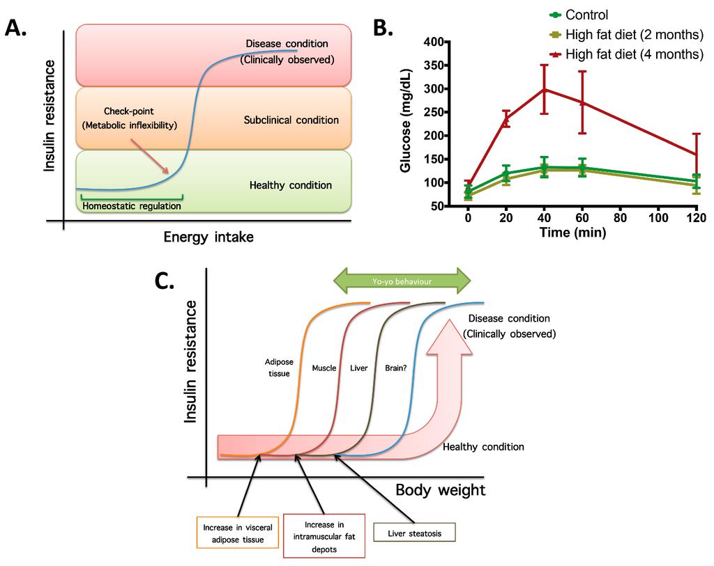 Foreign Compound Metabolism in Mammals Volume 4