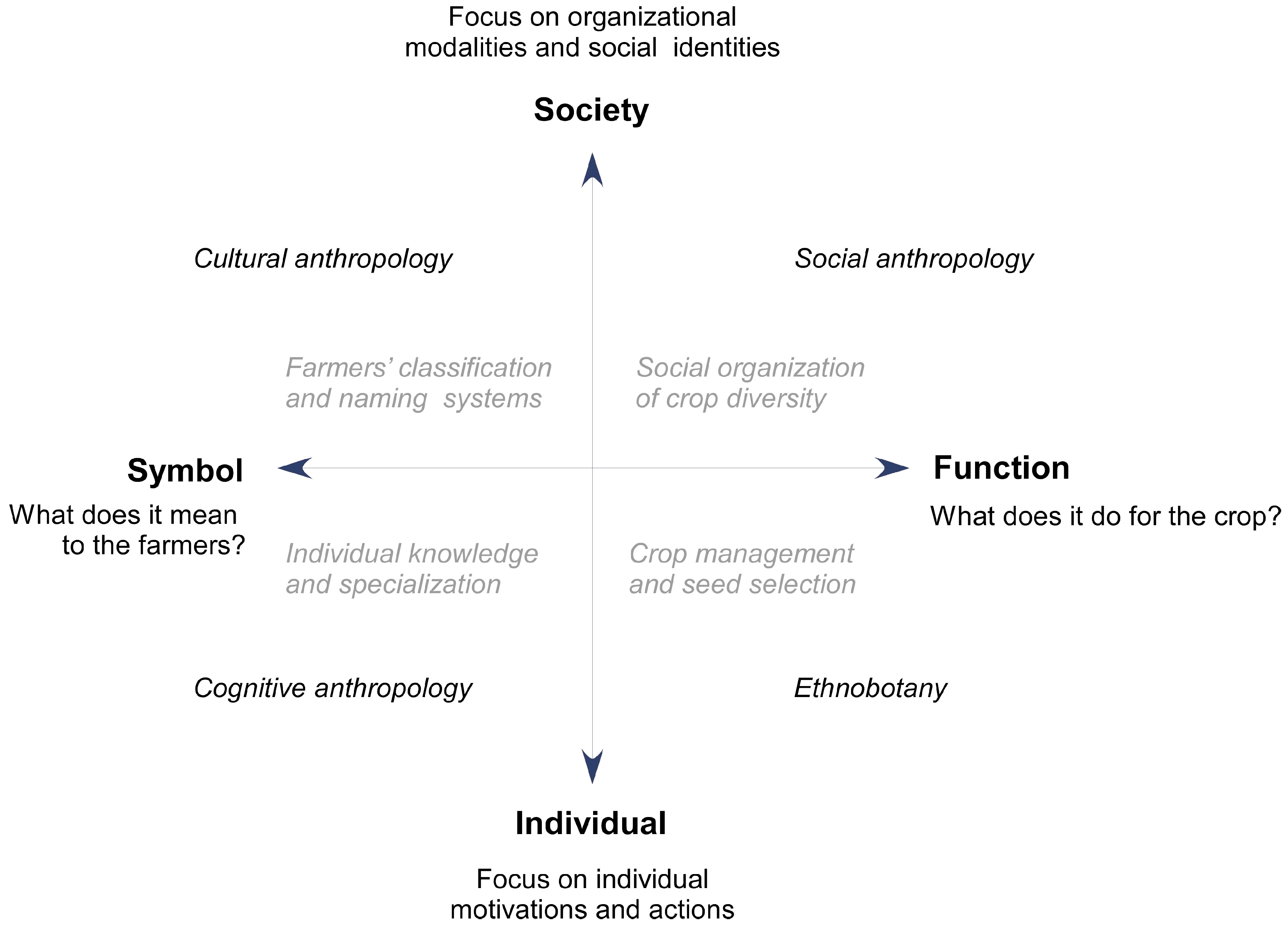 cultural anthropology social organization