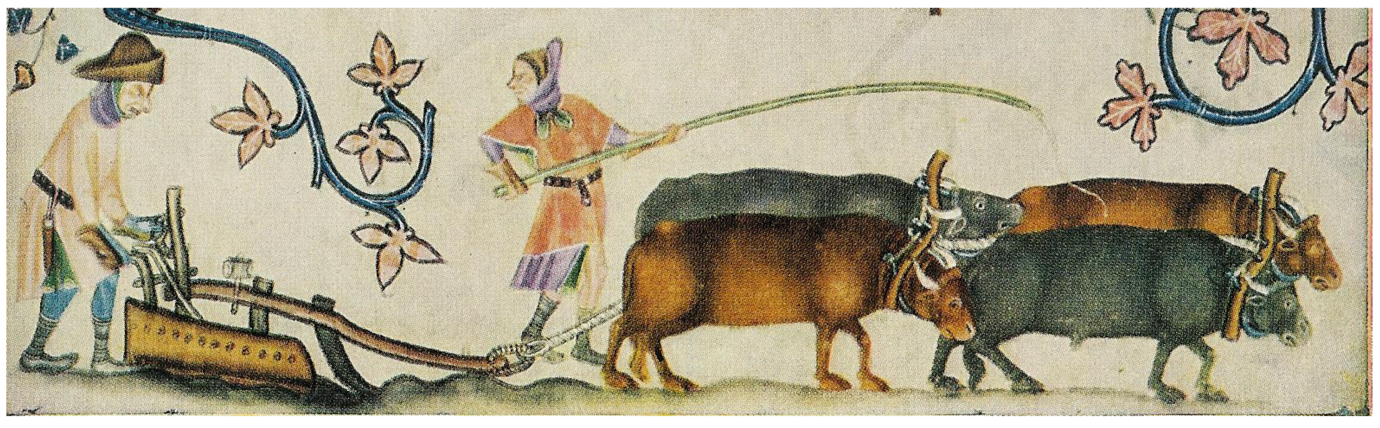 Diversity | Free Full-Text | On the History of Cattle