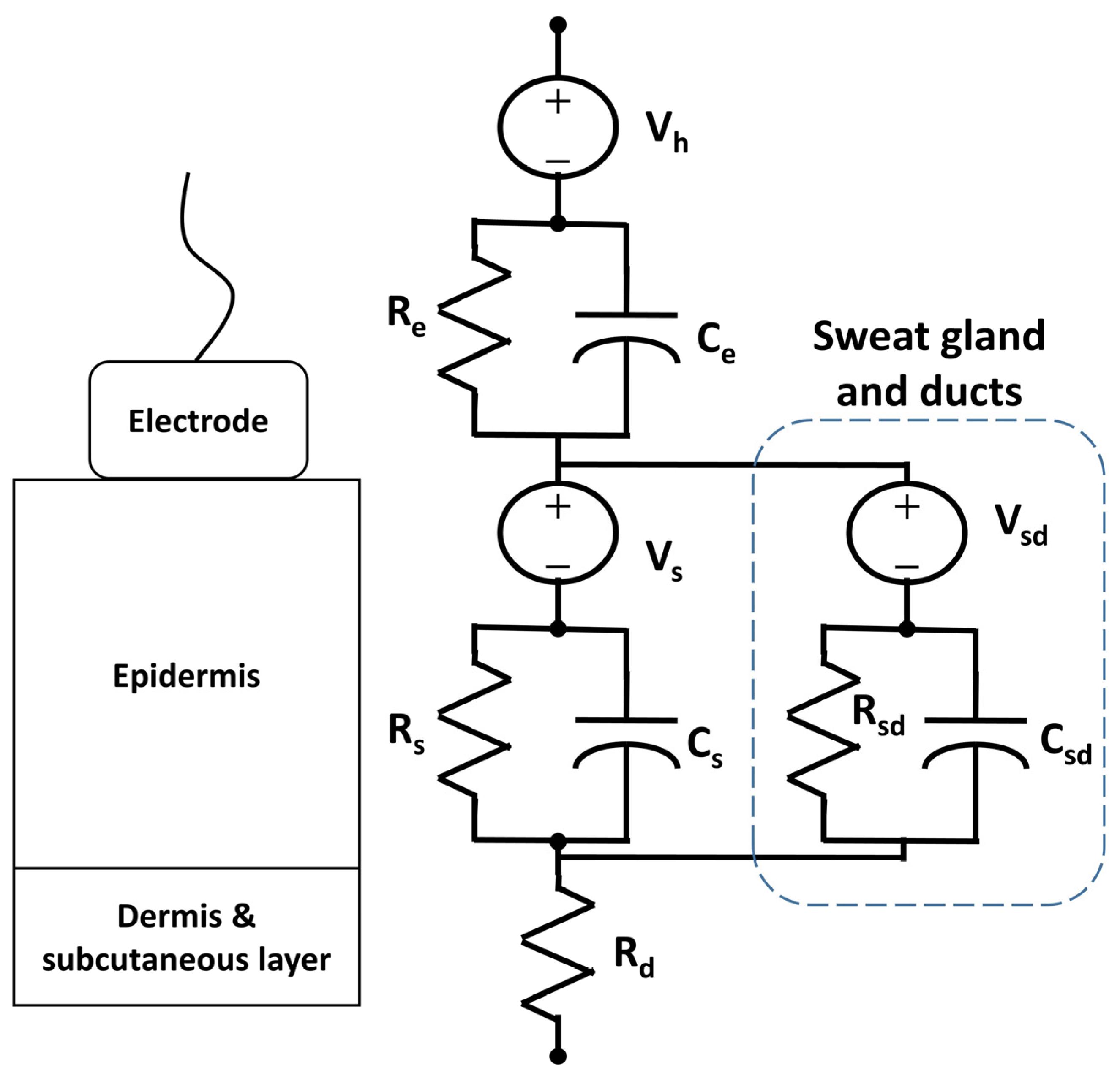 homeostasis negative feedback loop sweating in wiring diagrams
