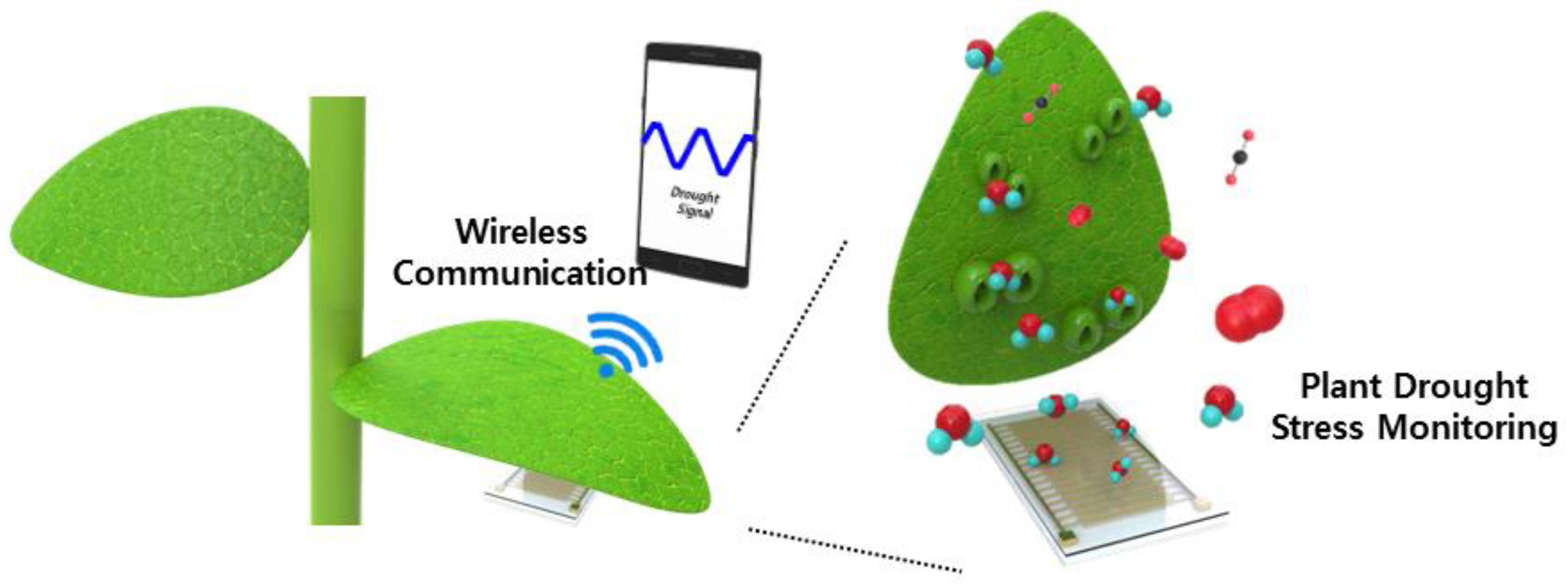 Electronics | Free Full-Text | Flexible PI-Based Plant Drought
