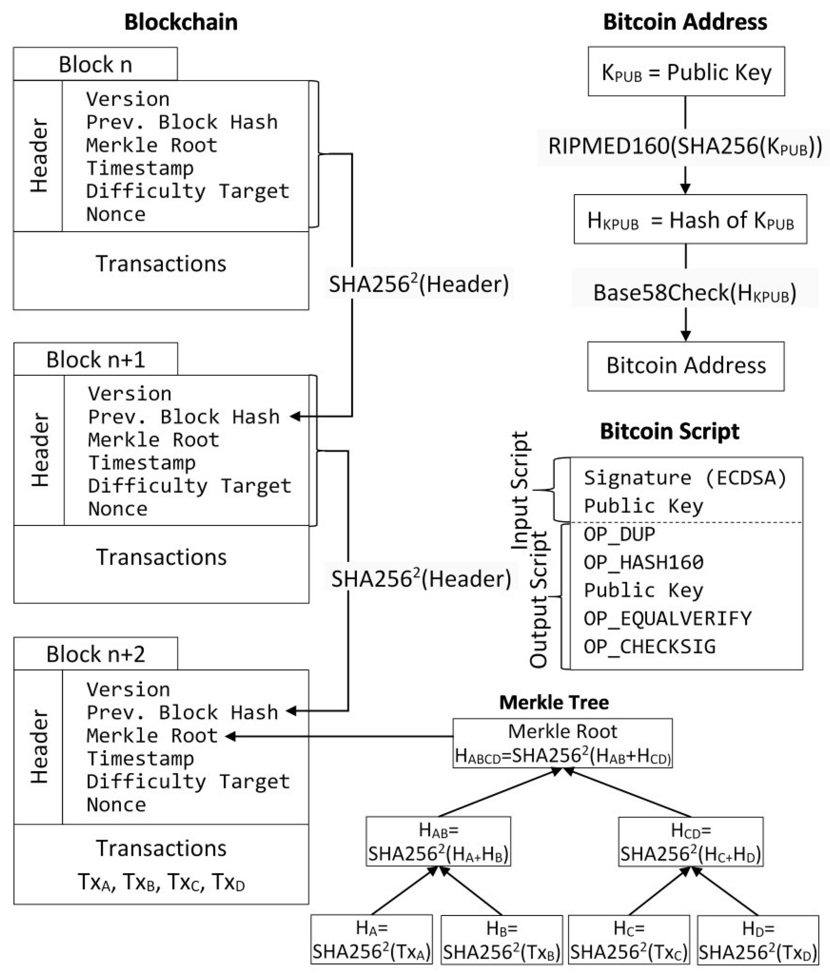 bitcoin priėmė svetaines indijoje 0 19 btc iki jav dolerių