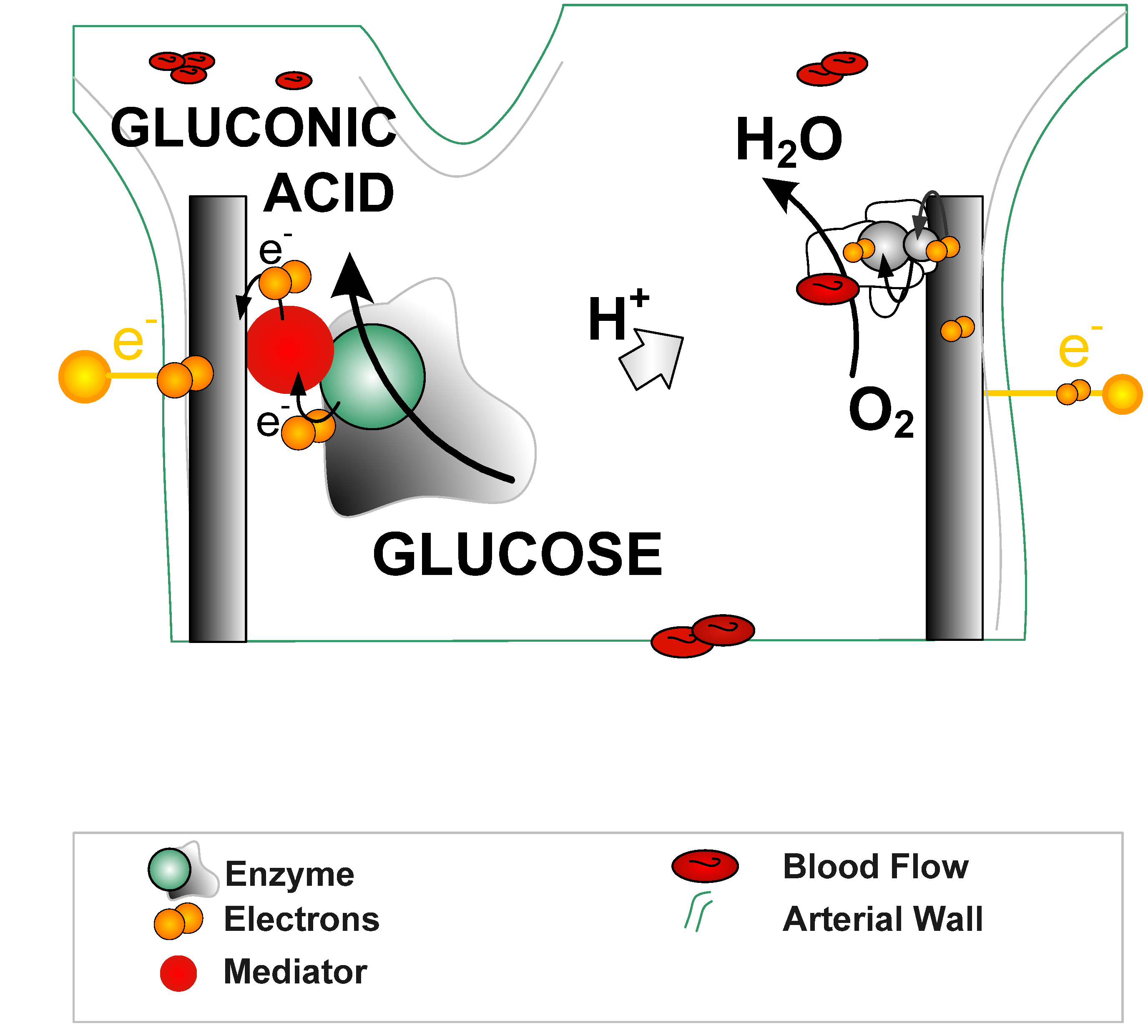 energies | free full-text | enzymatic biofuel cells ... diagram of squamous cell carcinoma #12