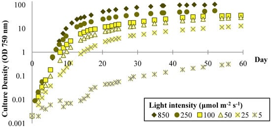 Effects of Light and Temperature on Fatty Acid Production in Nannochloropsis Salina