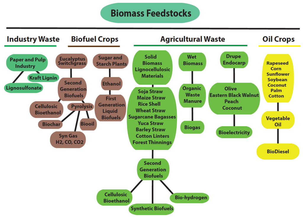 biofuel research paper This paper was drafted by the iea renewable energy division biomass research centre second-generation biofuels are not yet produced commercially.