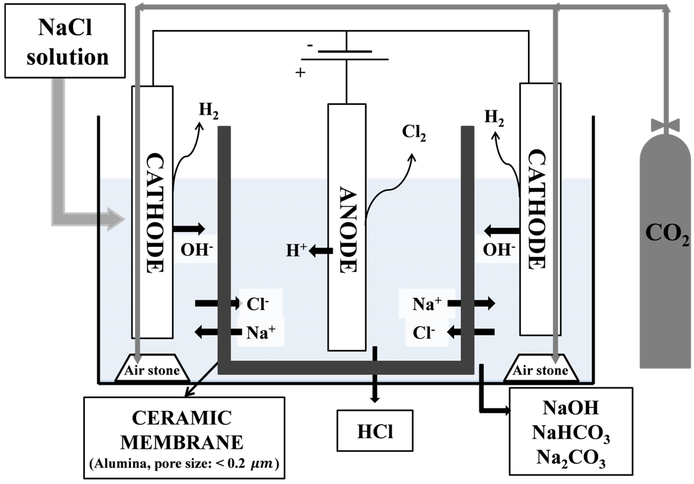 Energies Free Full Text Co2 Fixation By Membrane