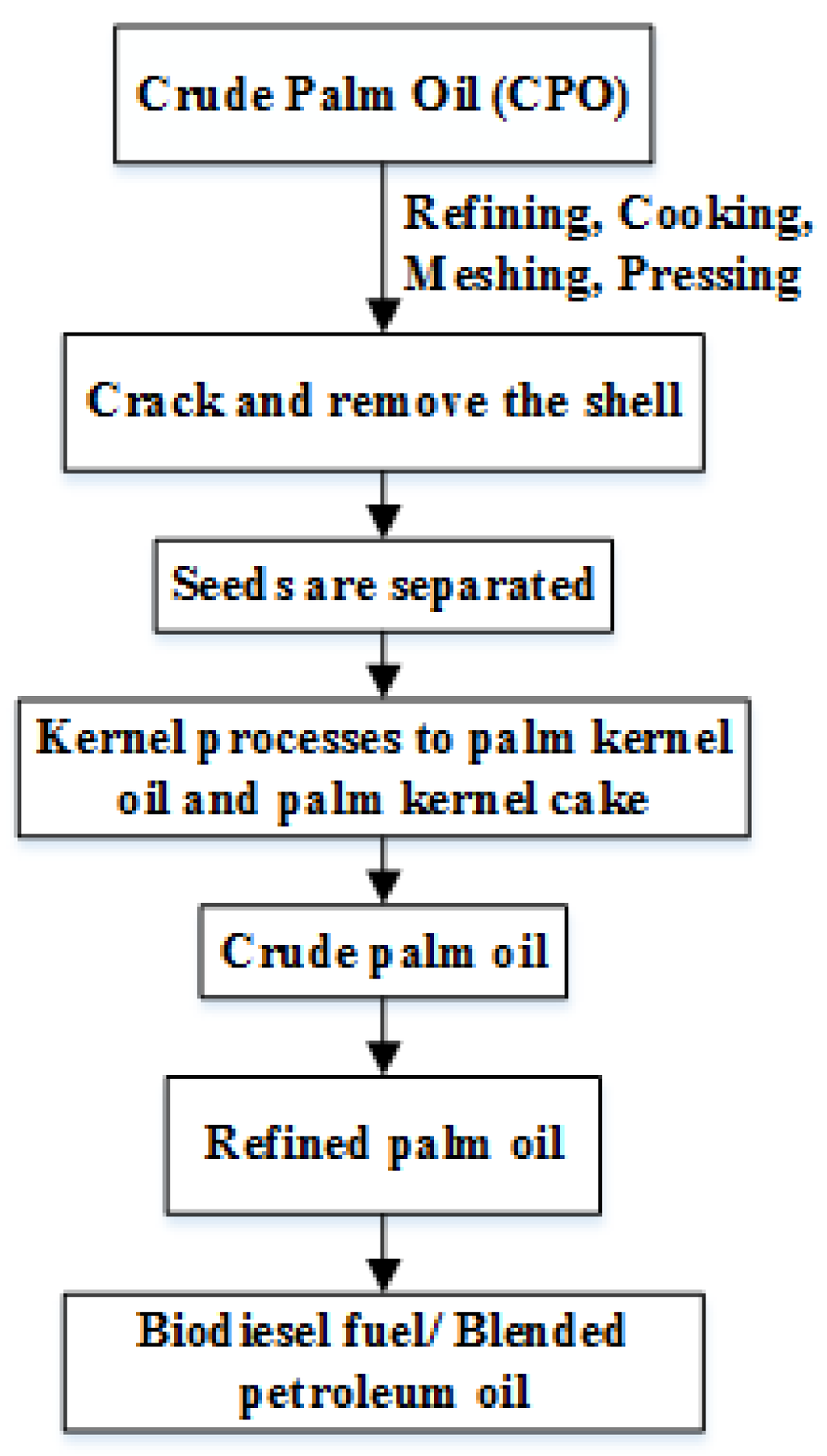 palm oil policy essay Palm oil is a form of vegetable oil produced primarily in indonesia and malaysia1 palm oil has gained popularity in the production of consumables for its.