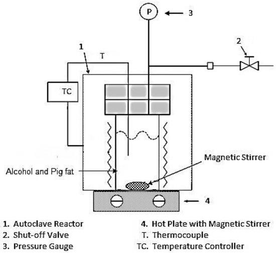 swine burns test on dc shunt motor