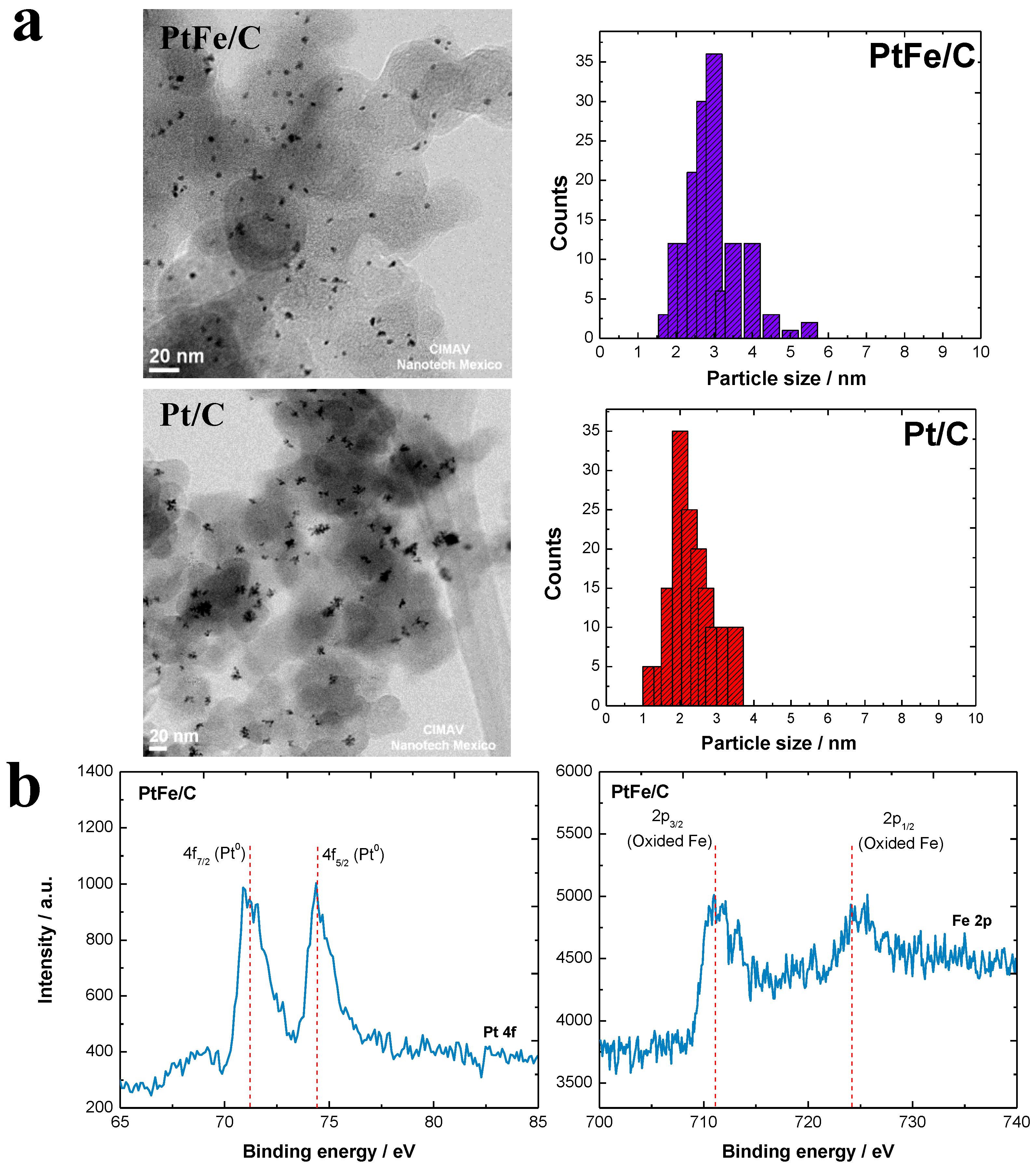 an overview of raman spectroscopy