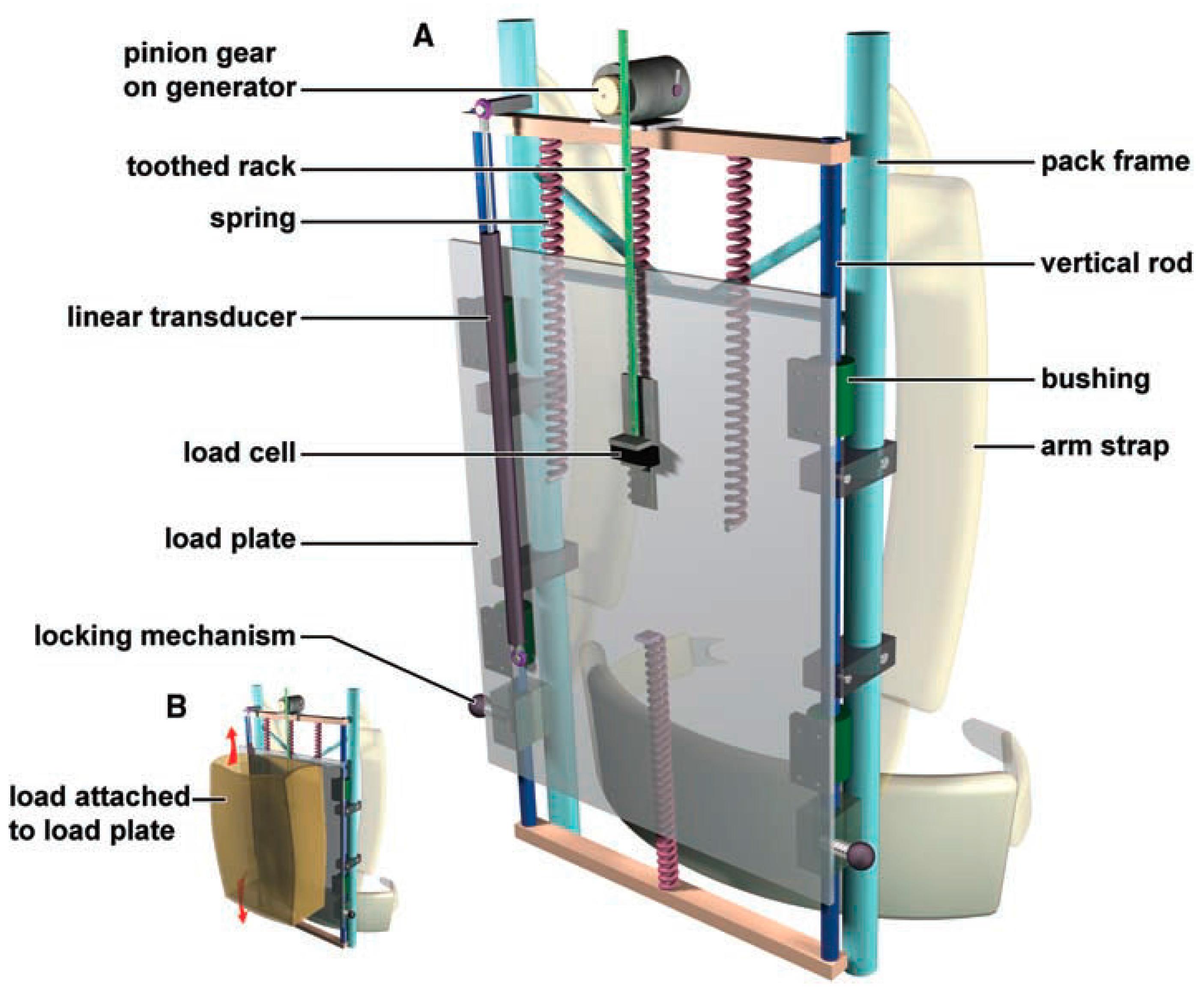 biomechanical mechanism for energy harvesting from