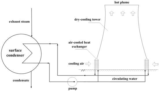 steam profile wardell