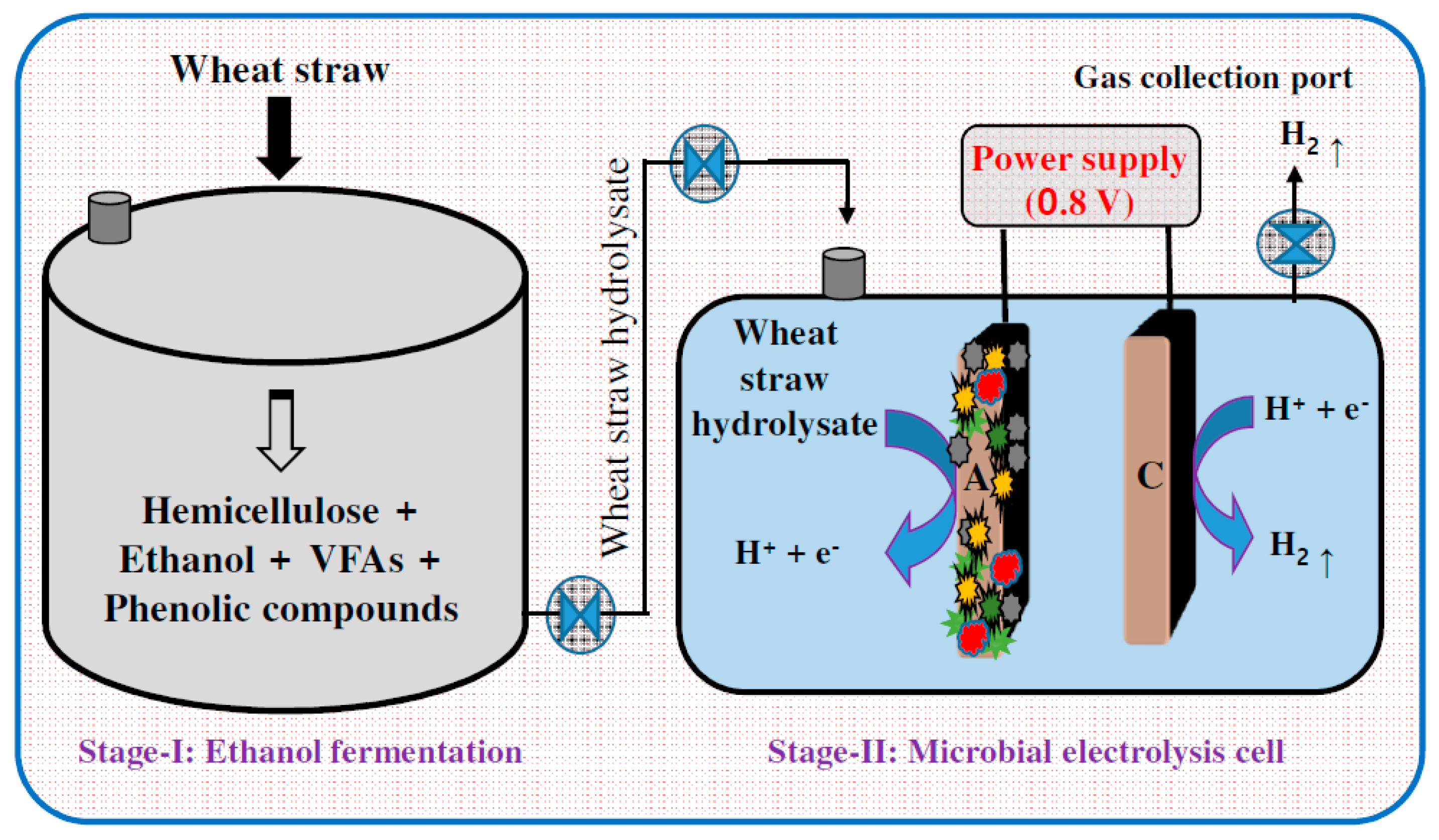 biohydrogen production using microbial electrolysis cell This study demonstrates microbial electrolysis cell biohydrogen production from sewage sludge using a continuous hydrogen fermentation system with a heat.