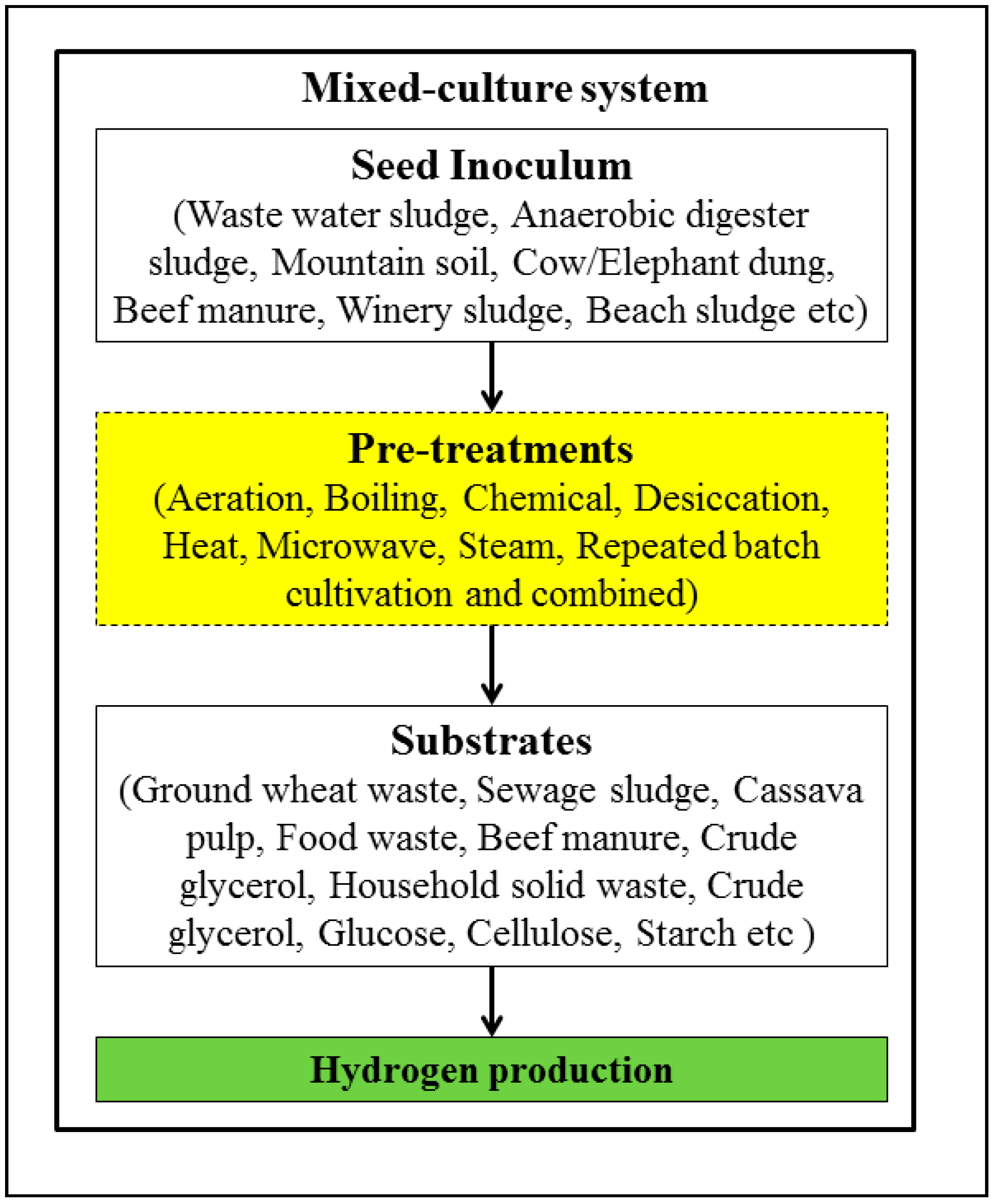 Energies | Free Full-Text | Seed Pretreatment for Increased