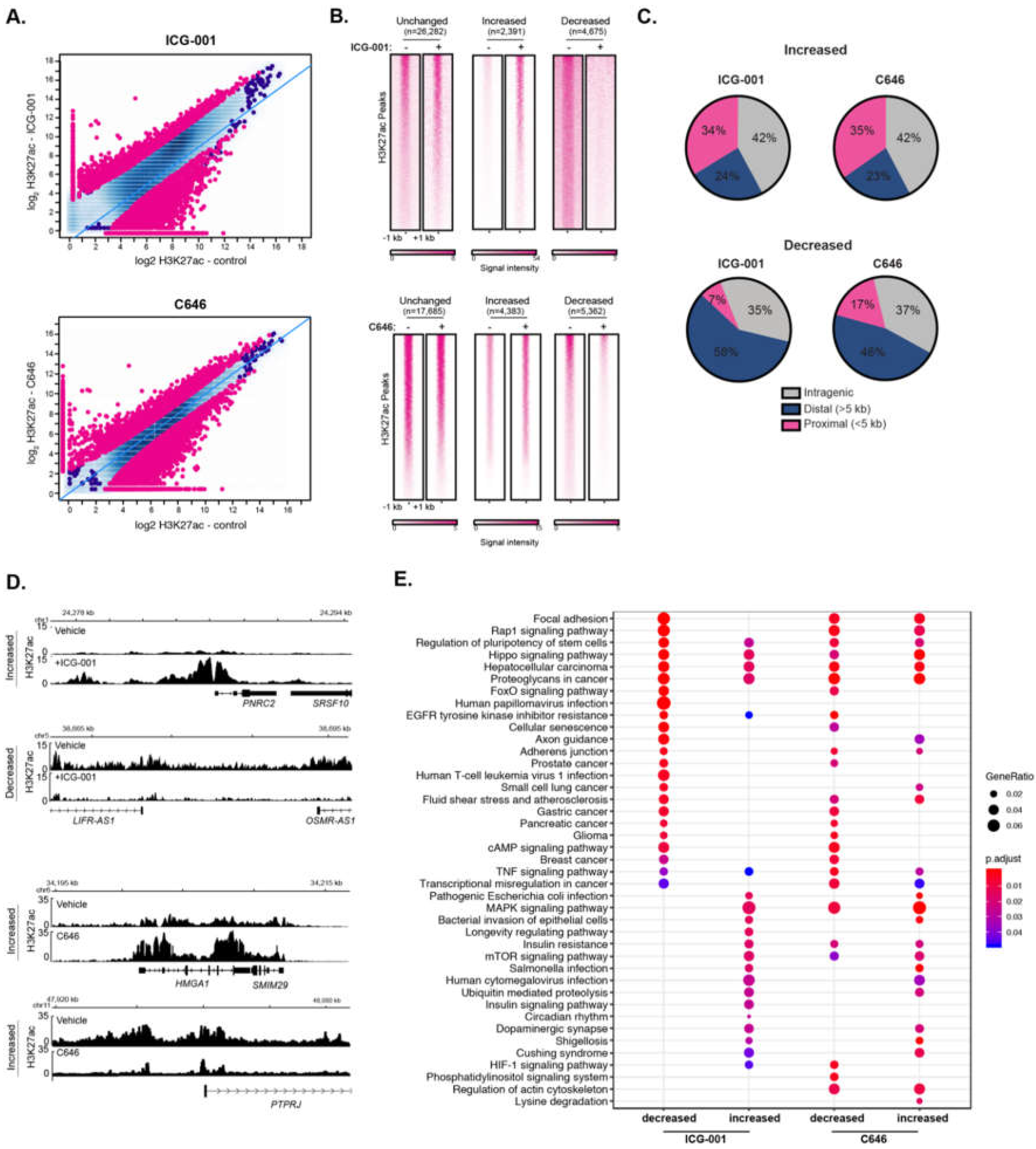 Editorial Sharing Epigenomes Globally >> Epigenomes Free Full Text Disruption Of Broad Epigenetic Domains