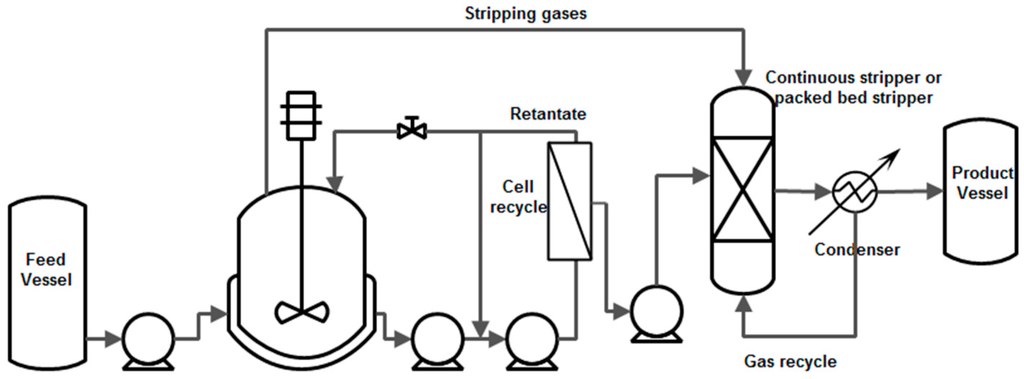 Acetic Acid Manufacturing Process For Acetic Acid furthermore Proext likewise Oil And Gas Cyber Security 101 besides Industrial deionization together with Importance Of Fermentation Pilot Plant. on downstream process diagram