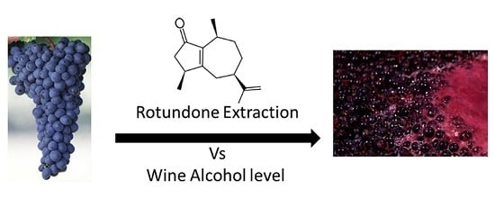 journal article on alcohol fermentation