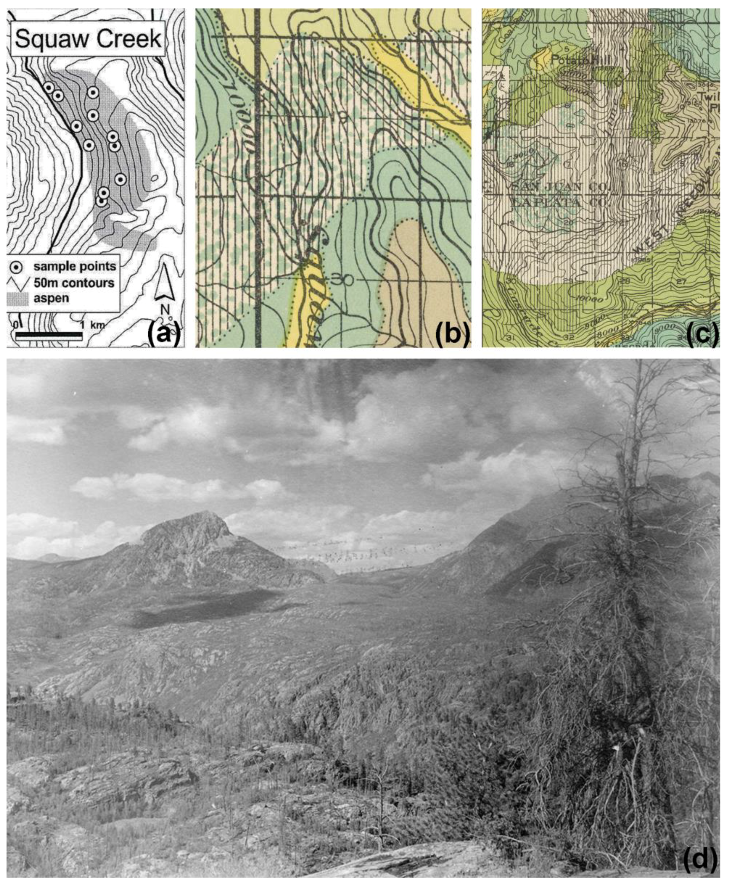 Fire | Free Full-Text | Historical Fire Regimes in Ponderosa