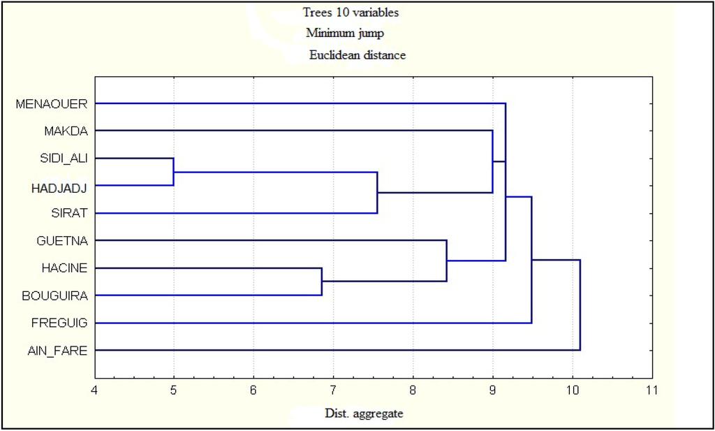 Melissopalynology Analysis Essay - image 8