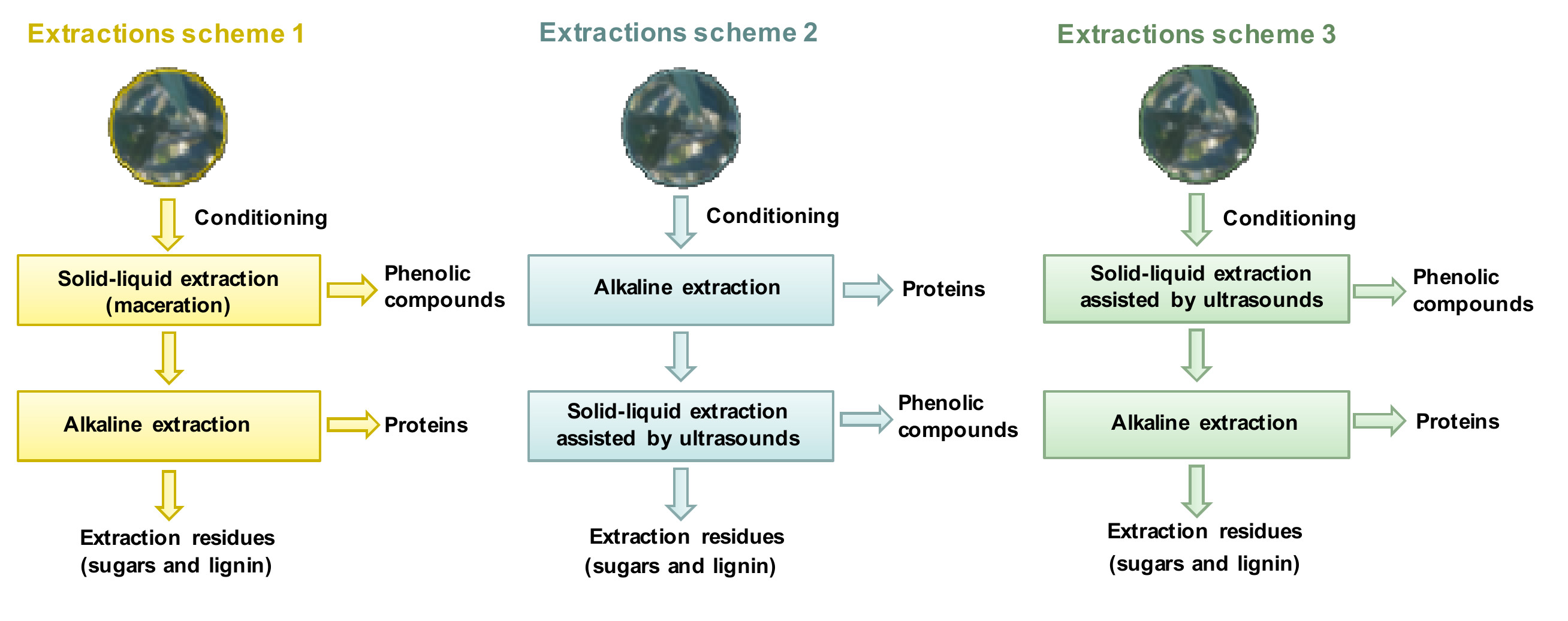 Foods Free Full Text Integrated Process For Sequential Extraction Of Bioactive Phenolic Compounds And Proteins From Mill And Field Olive Leaves And Effects On The Lignocellulosic Profile Html