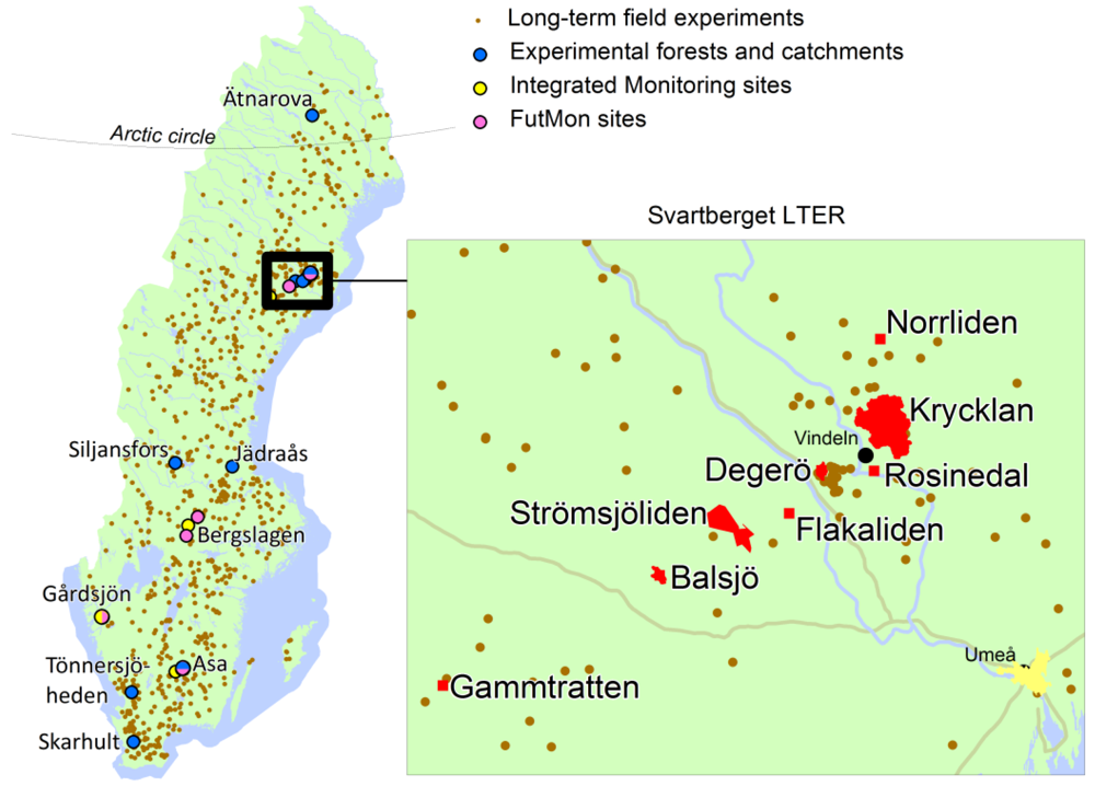 Forests Free FullText Consequences Of More Intensive Forestry - Sweden forest map