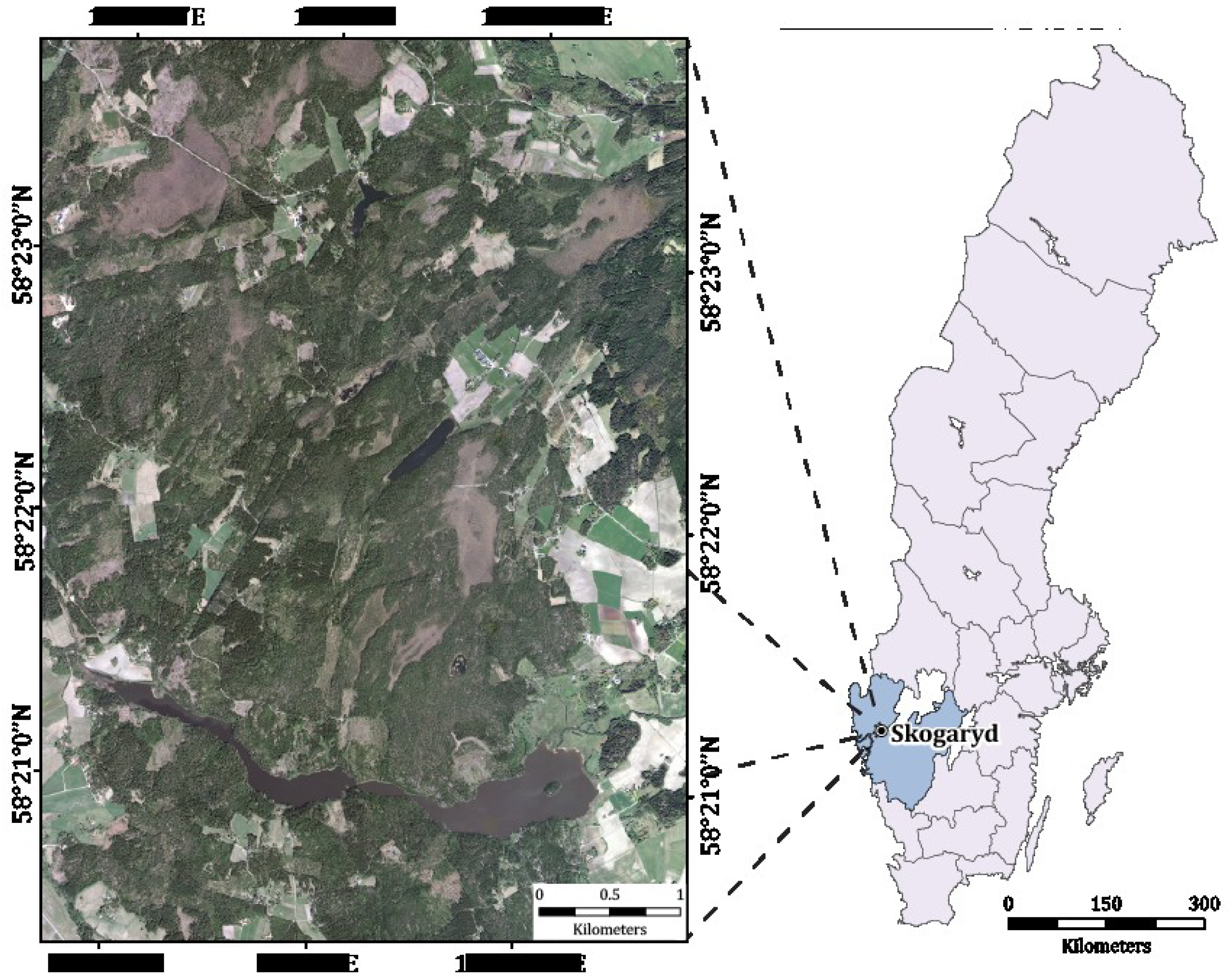 Forests Free FullText LowDensity LiDAR And Optical Imagery - Sweden forest map