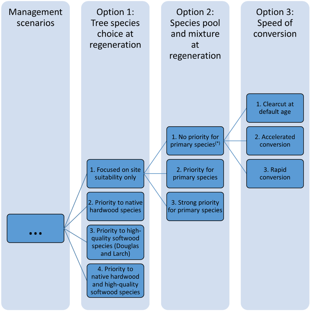 planning function of management for boeing essay A custom written essay example below provides you with some information about the main functions of management be sure to use it at your convenience.