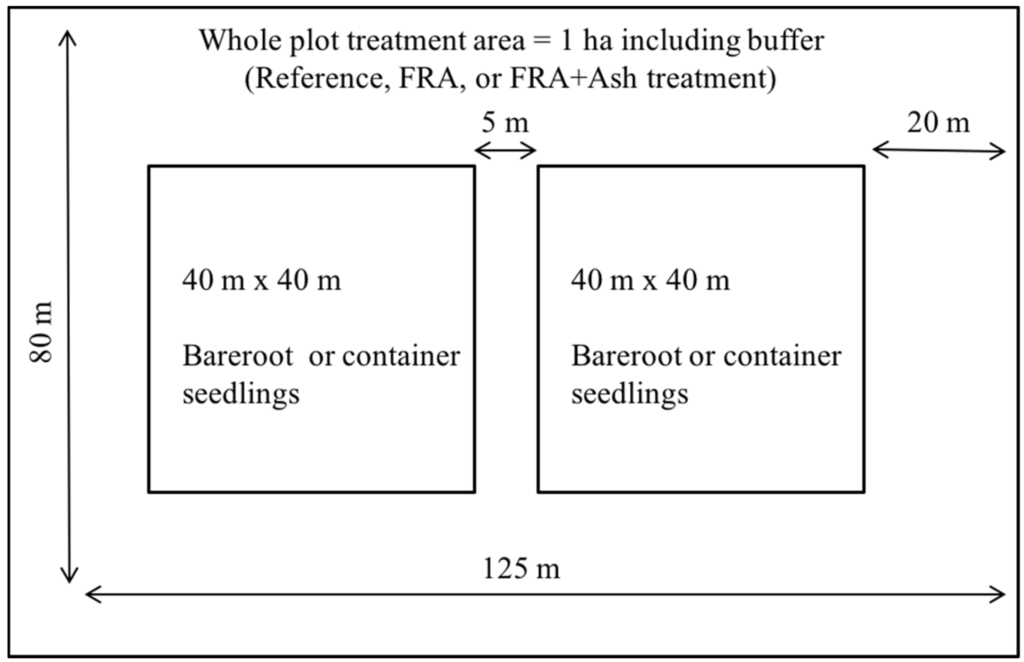 Forests   Free Full-Text   Assessing Douglas-Fir Seedling Establishment  Using Two Modified Forestry Reclamation Approaches in the Pacific Northwest    HTML