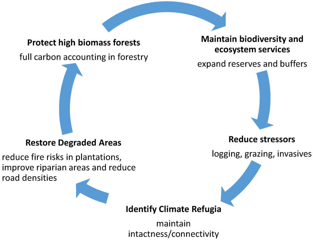 biodiversity and its relationship to ecosystem health integrity