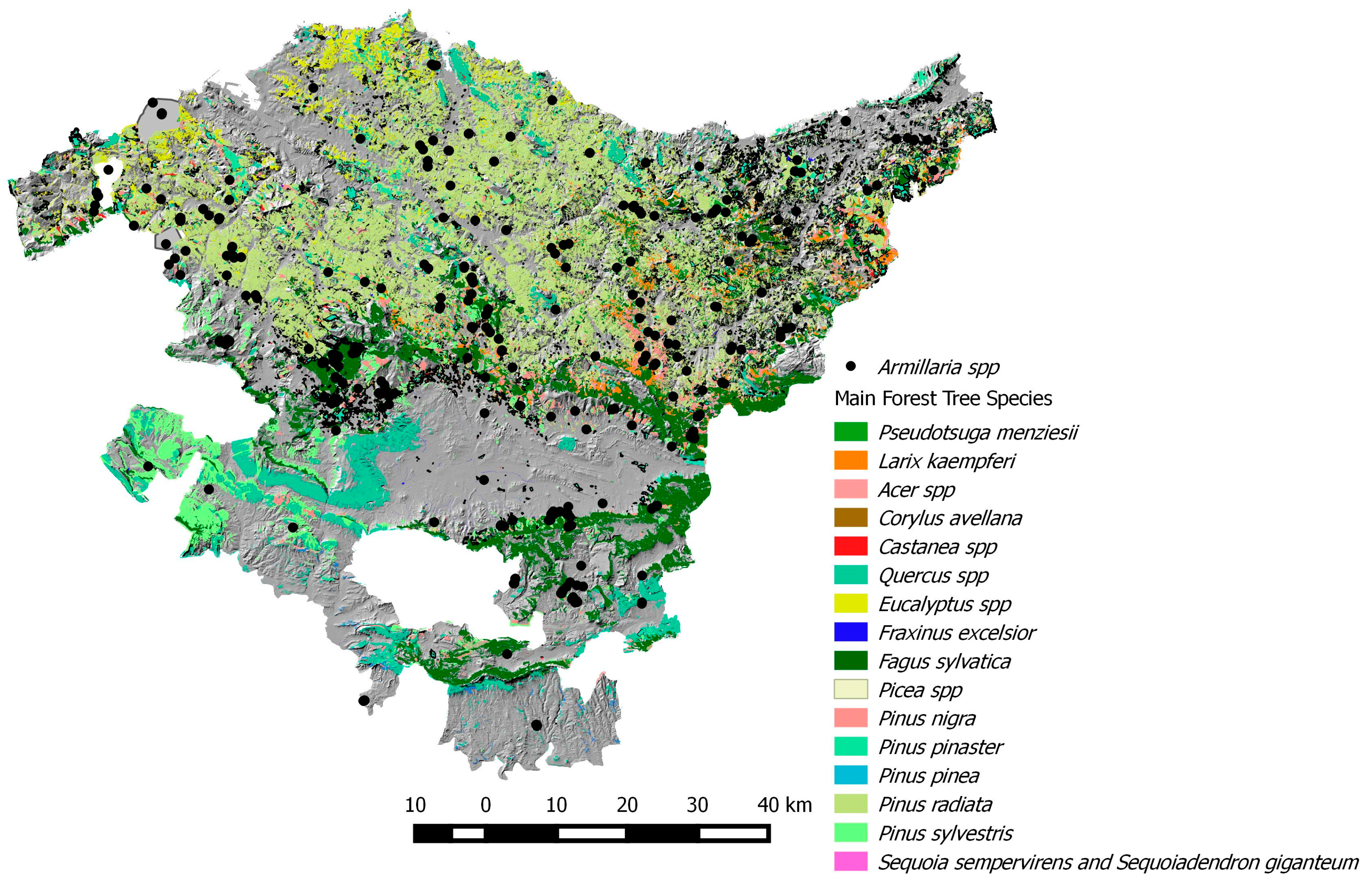 Forests  Free FullText  Distribution and Characterization of